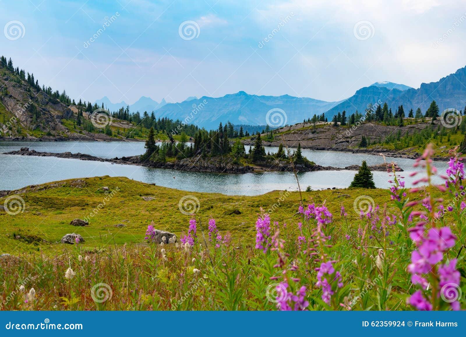 Alpiene meer en bergen in zonneschijnweiden, Alberta