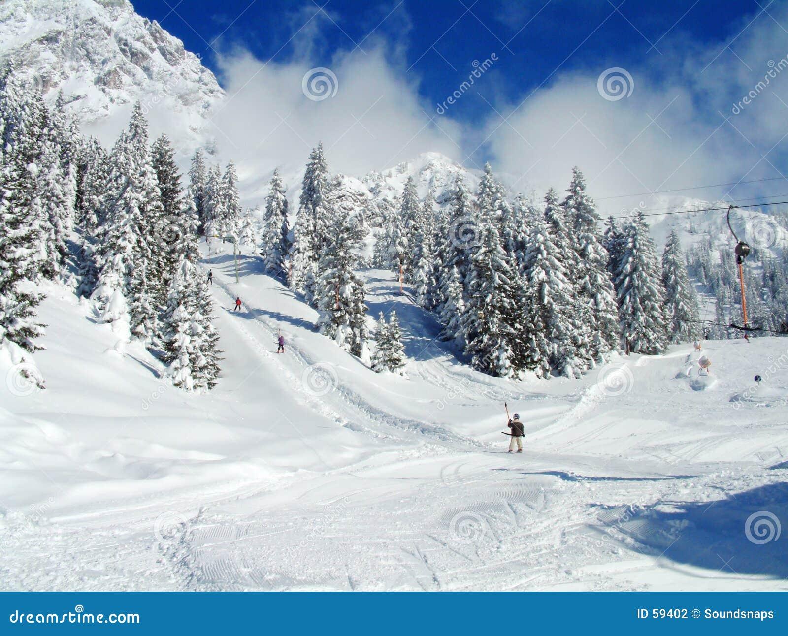Alpiene Skiërs op sneeuwhellingen