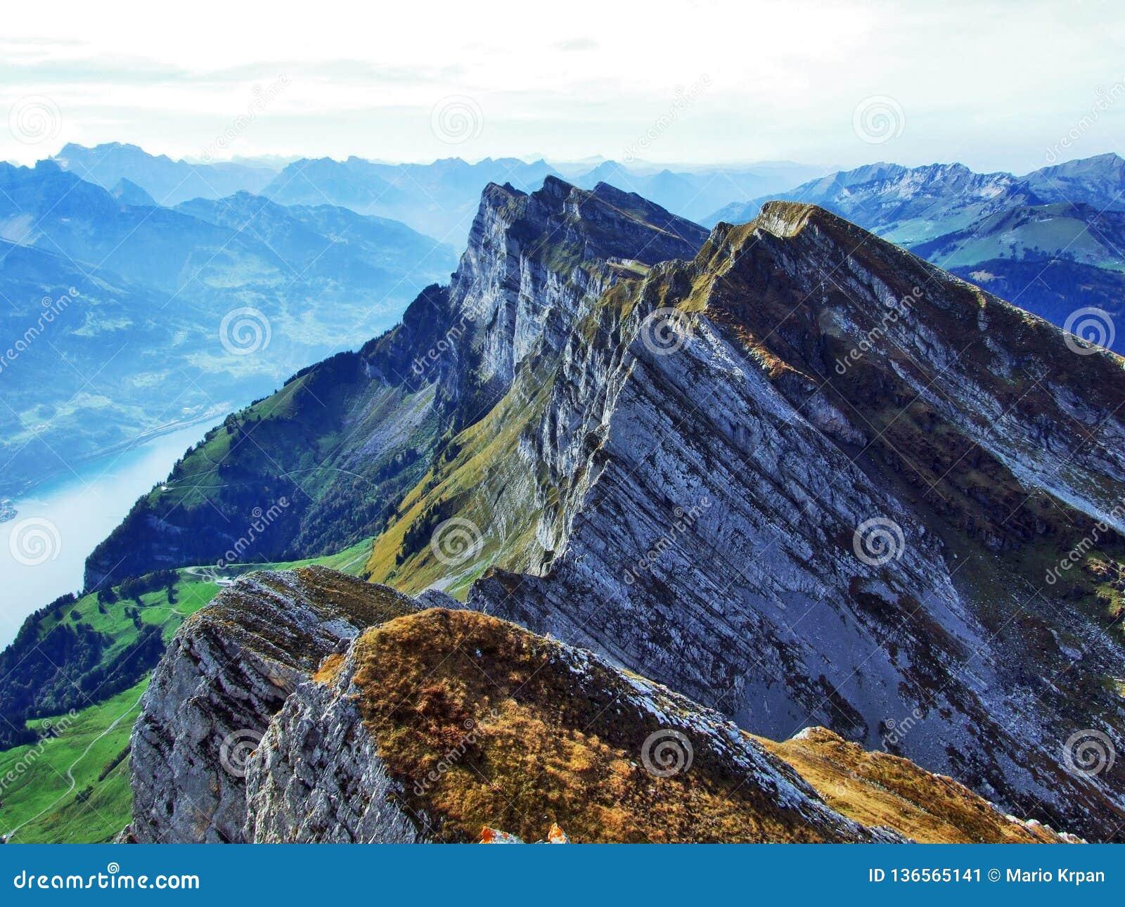 Alpina maxima i den Churfirsten bergskedjan mellan Thur River Valley och Walensee sjö