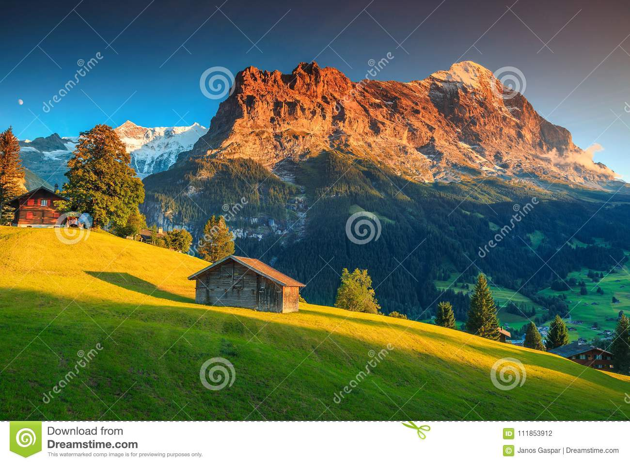 Alpine Chalets With Green Fields And High Mountains At