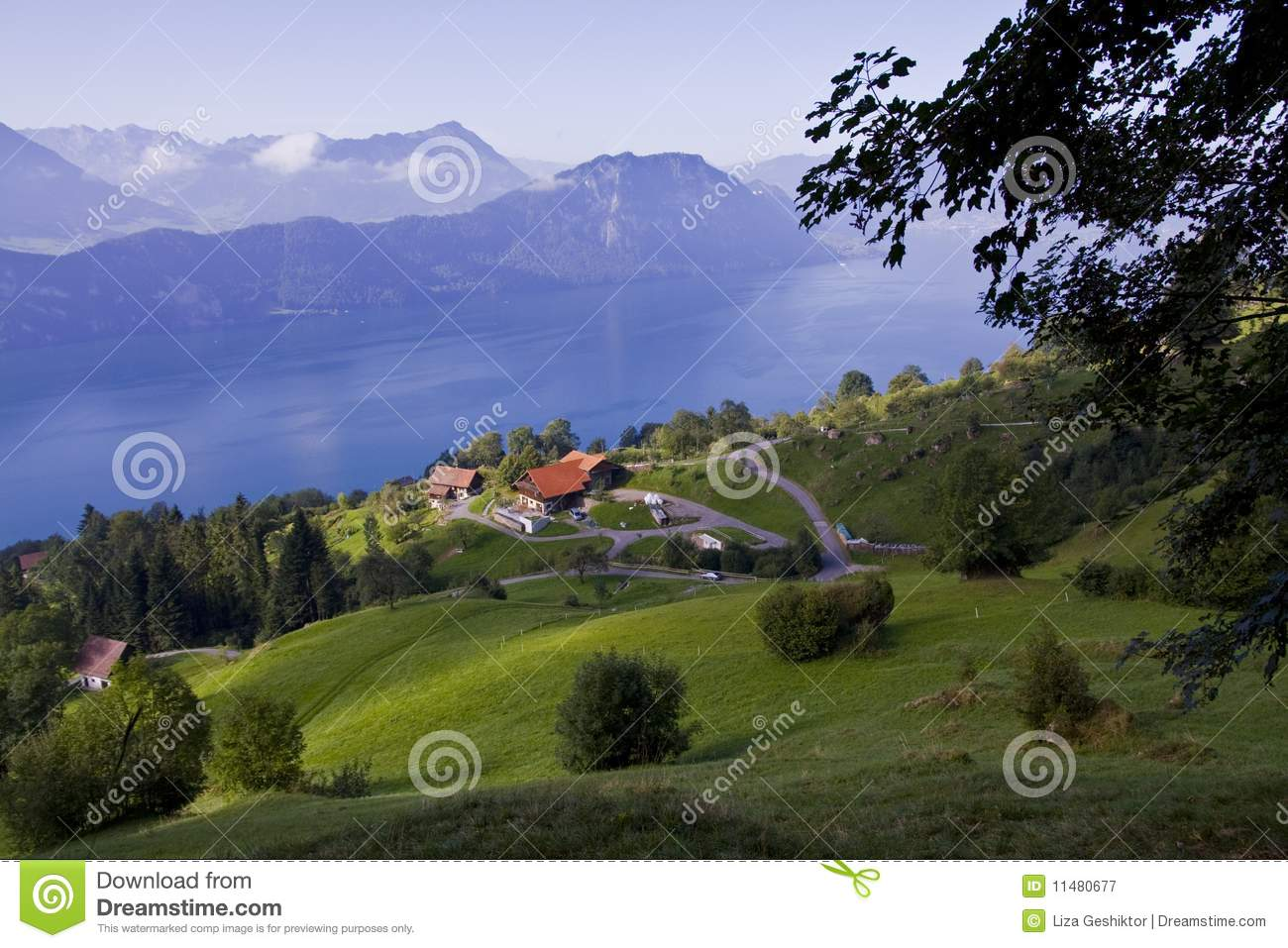 Alpine meadow with country house royalty free stock for Meadow house