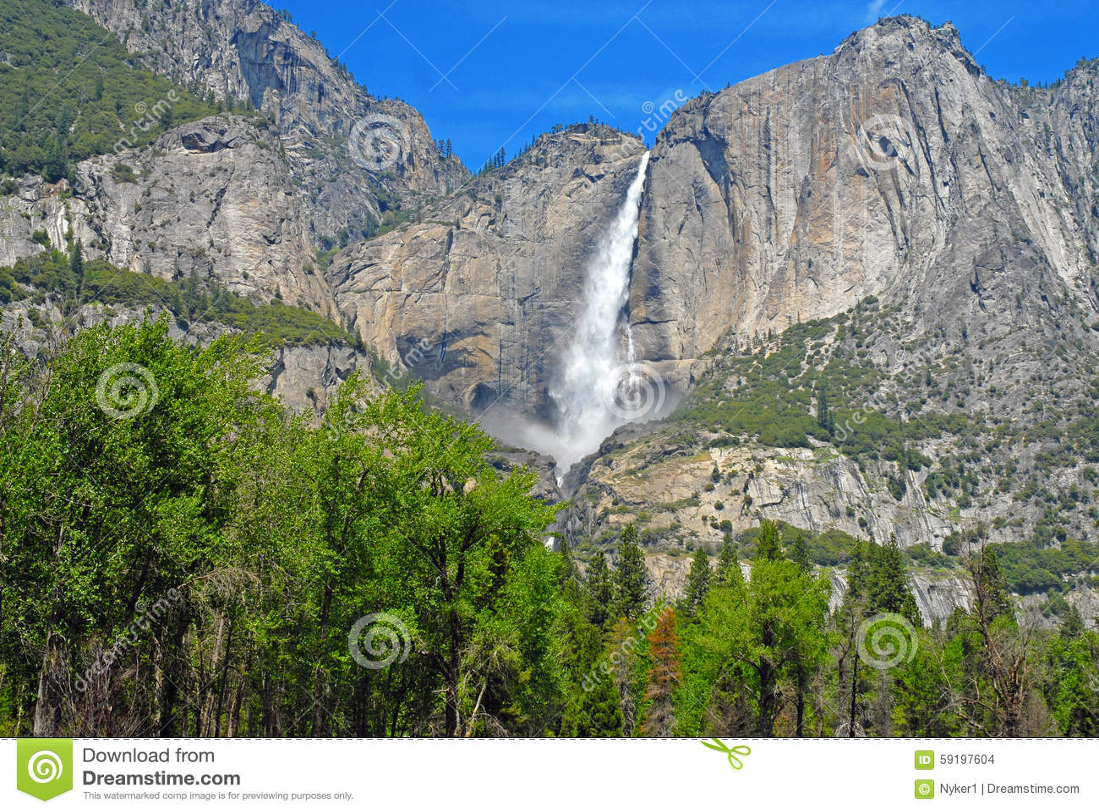 Alpine Park Alpine Scene In Yosemite National Park Sierra Nevada Mountains