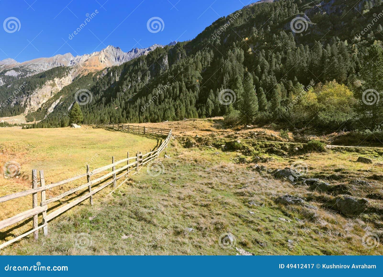 Download Alpines Tal in Österreich stockbild. Bild von zaun, schönheit - 49412417