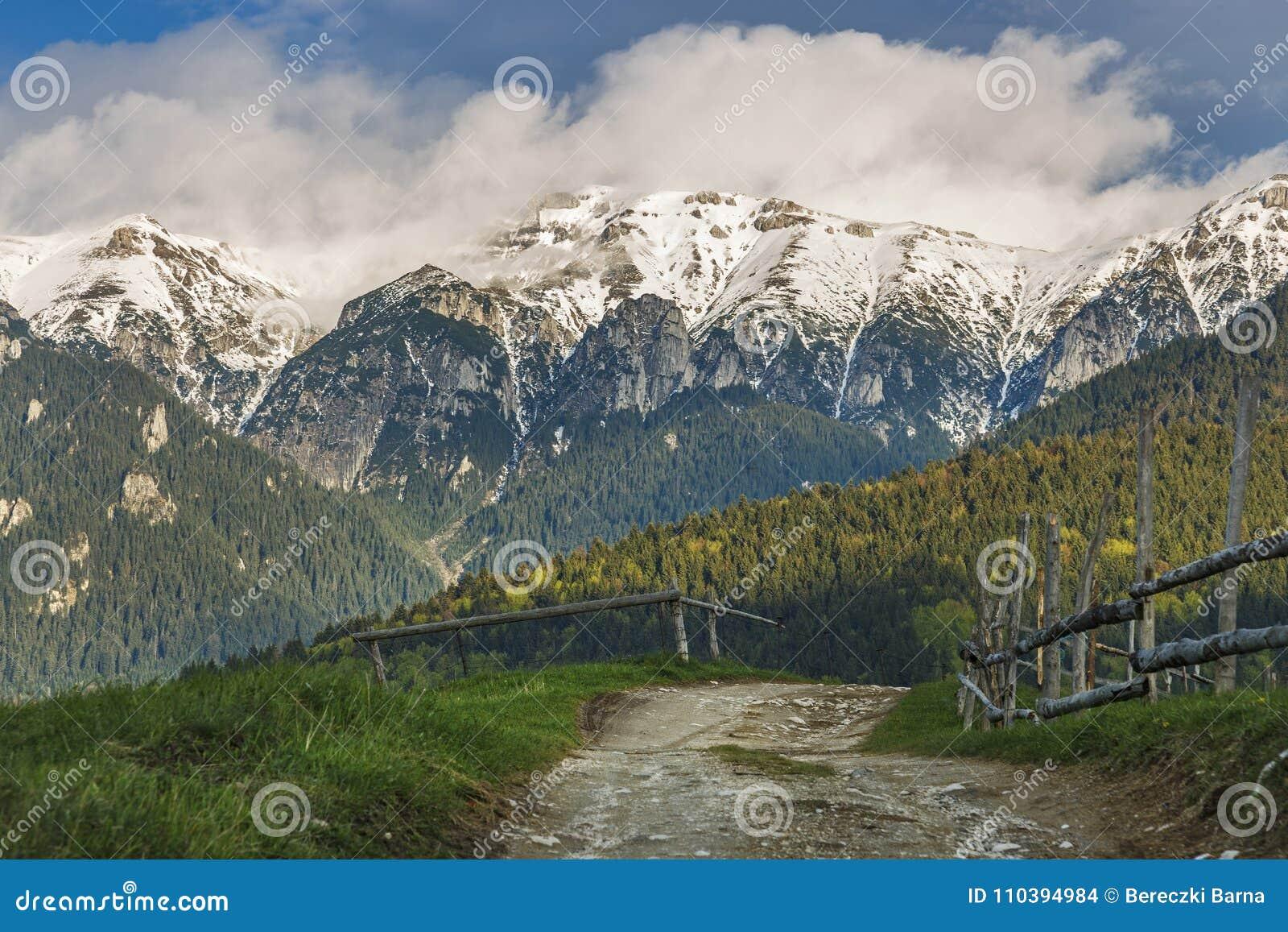 Alpint landskap för vår med gräsplanfält och höga snöig berg, kli, Transylvania