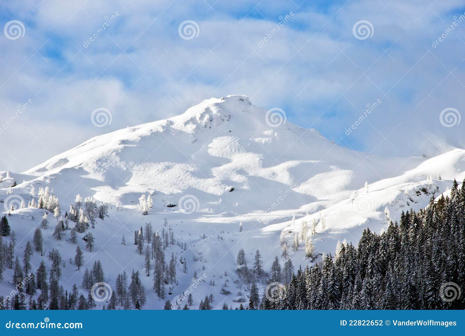 Chalet Beziere - Treeline Chalets - Treeline Chalets - Chalet Plan des Pierrys