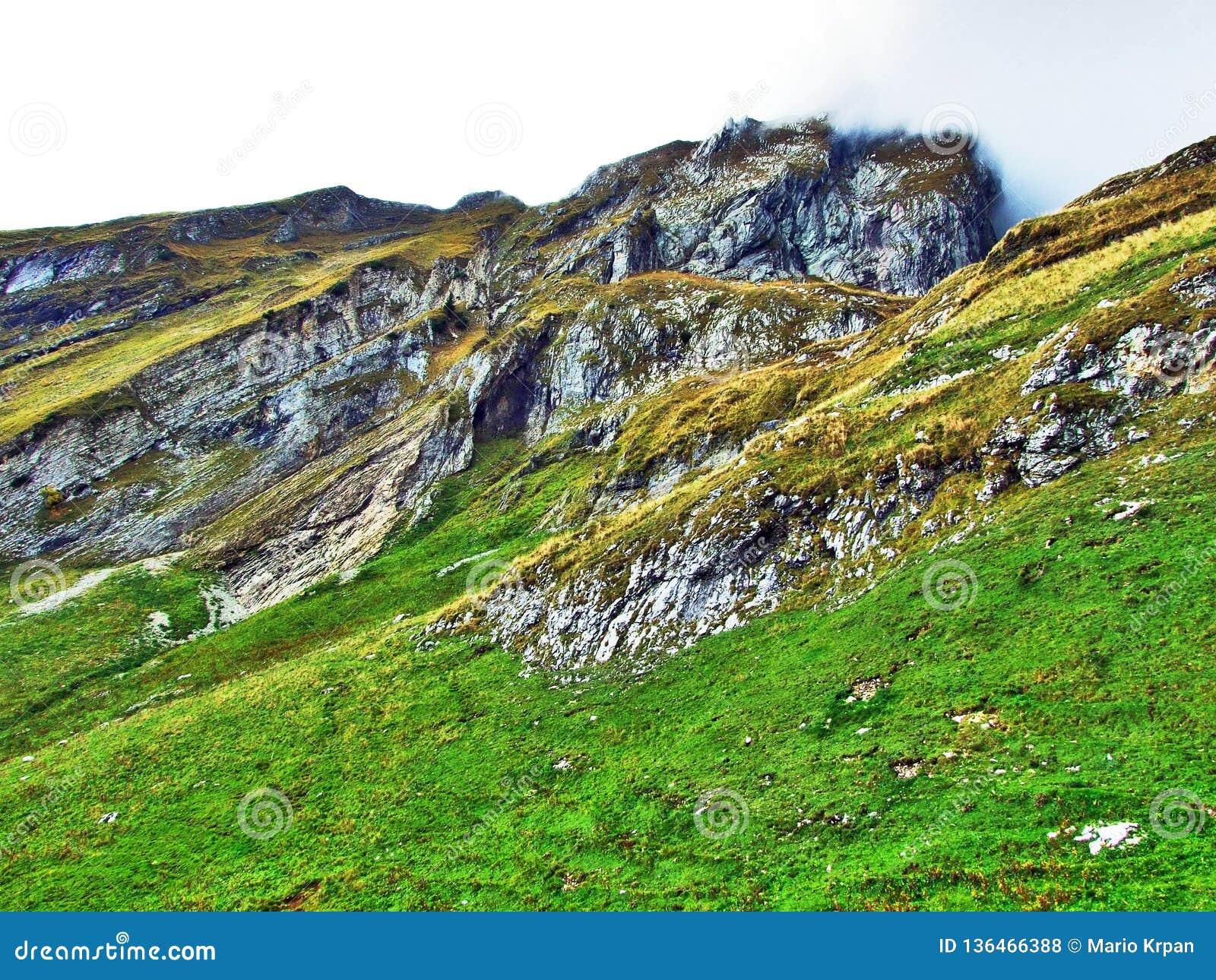 Alpstein山脉的易上镜头的牧场地和小山