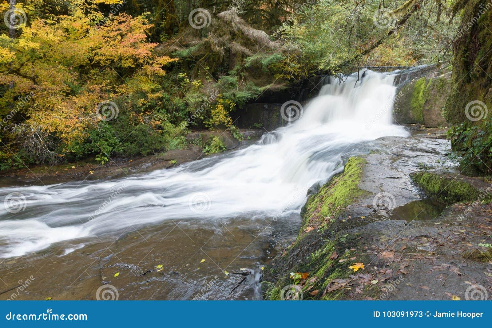 Coast Range Falls