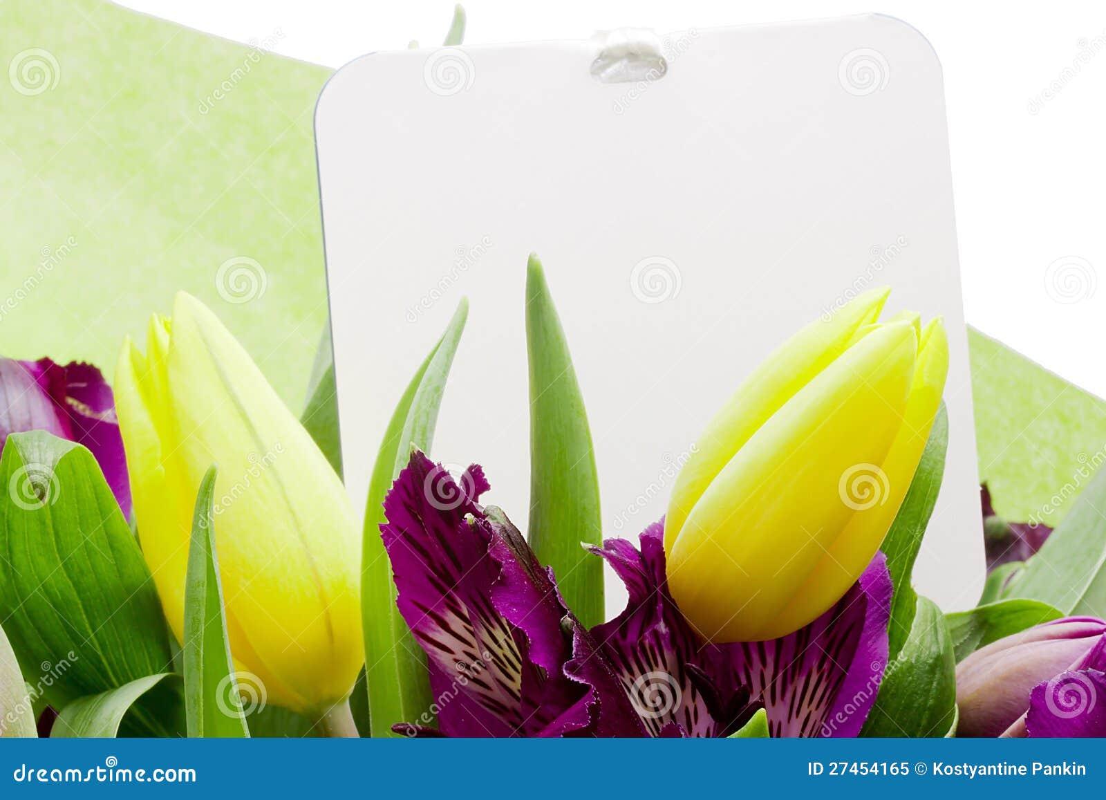 Alstroemeria-Blume