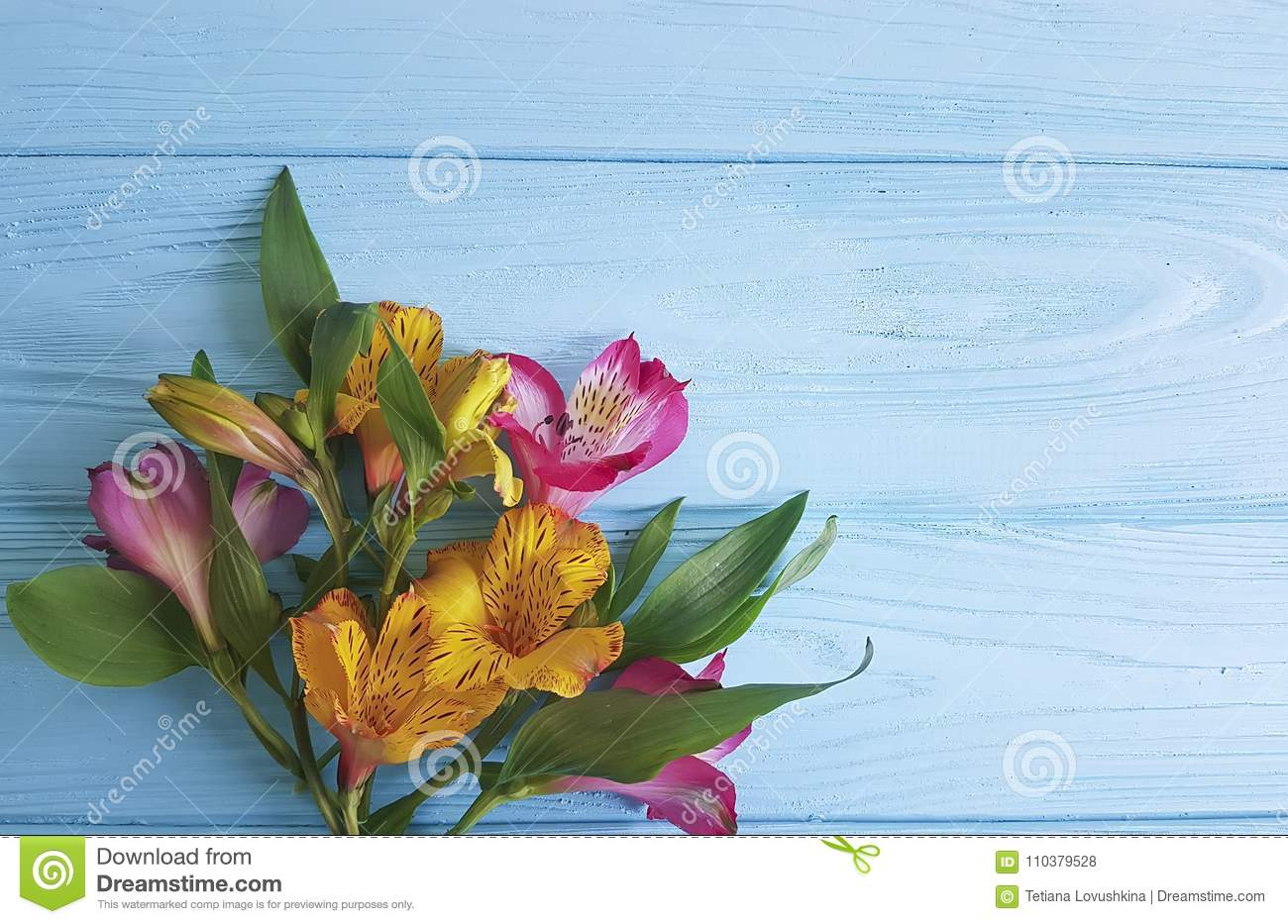 Alstroemeria design on a blue wooden birthday background greeting