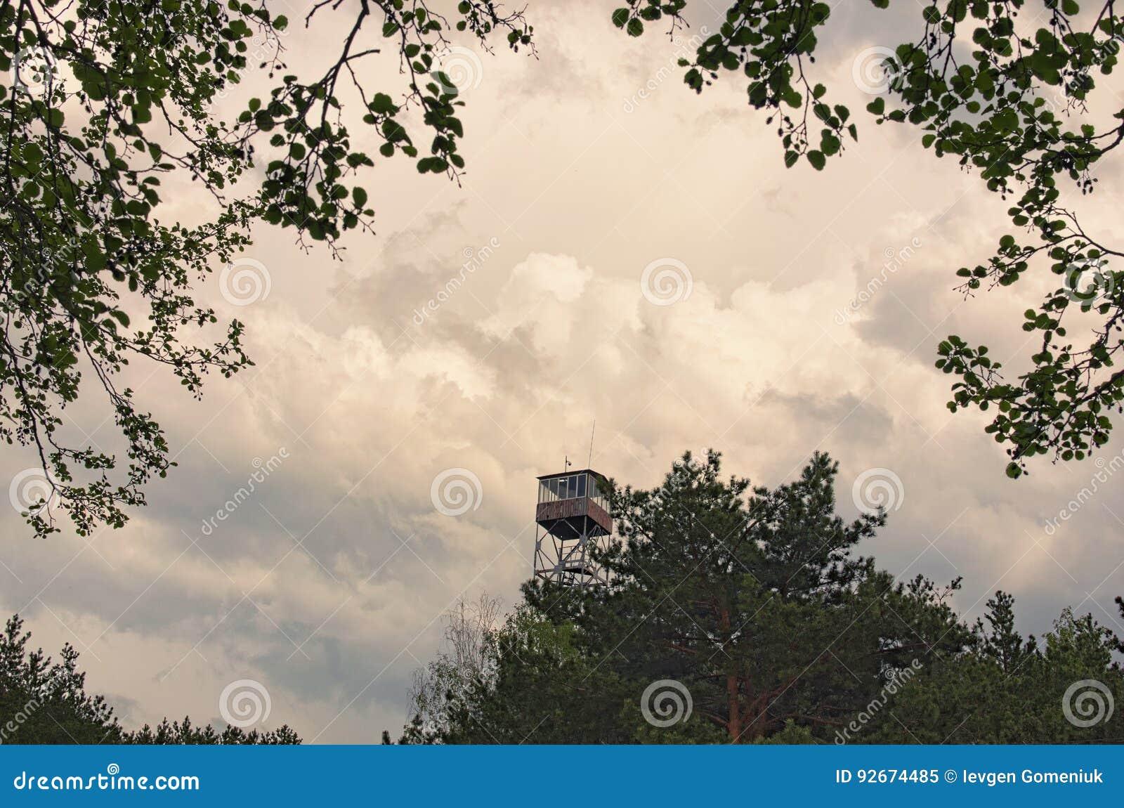 Alta torre di fuoco nelle nuvole di tempesta grige della foresta su fondo Regione di Volyn l ucraina