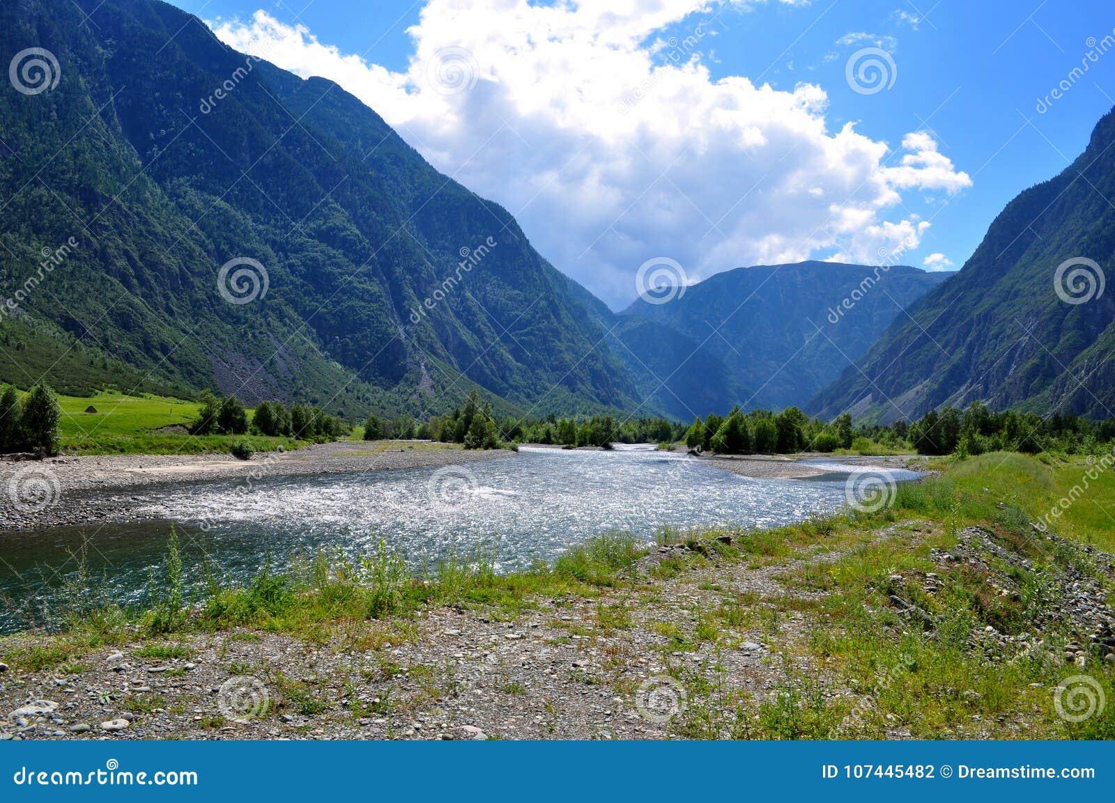 Altai montanhoso Rússia - em agosto de 2017 vista do rio da montanha que flui entre as montanhas altas de Altai em um dia ensolar
