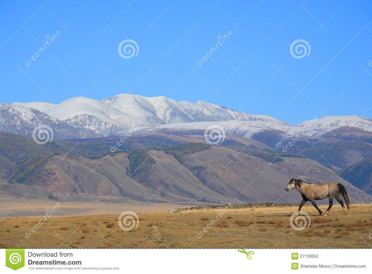 The Altai Mountains are a mountain range in East - Central Asia, where ...