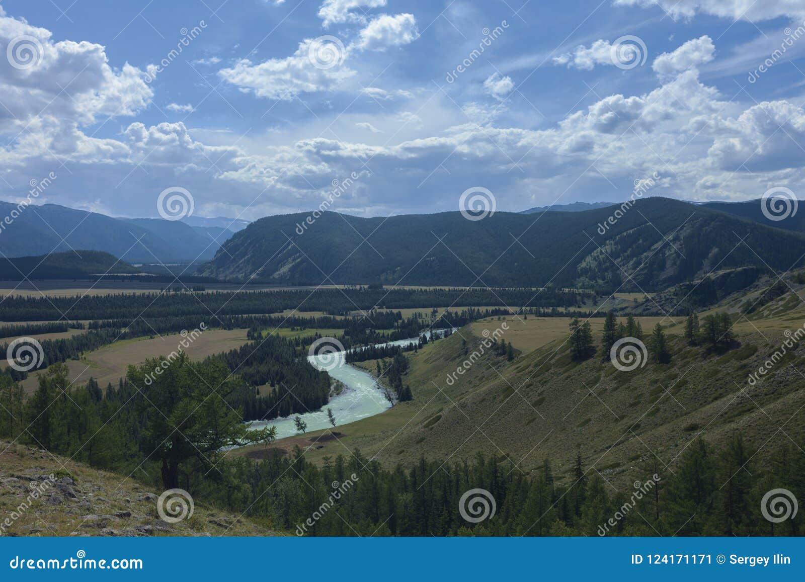 Altaidagar sist bergsommar Flod Argut Härlig höglands- liggande russ