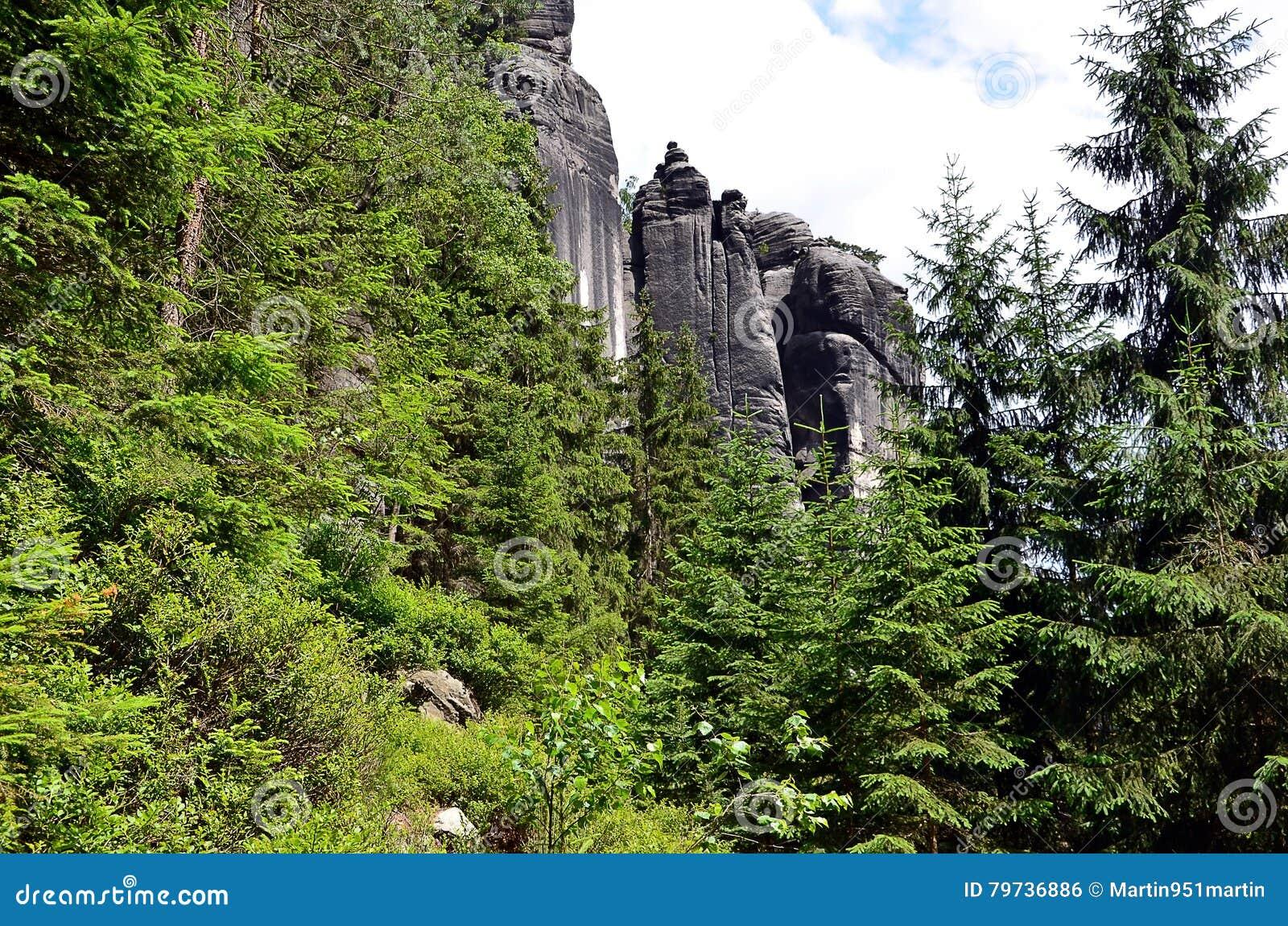 Altas rocas altas en bosque en el ejemplo del parque nacional