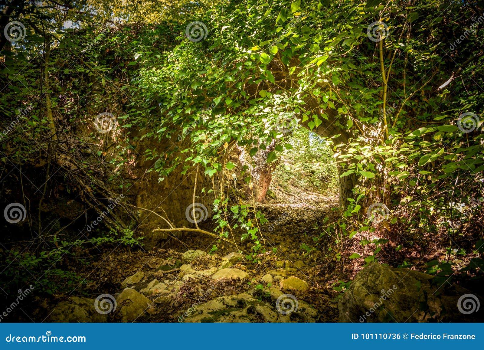 Alte römische Brücke im Wald