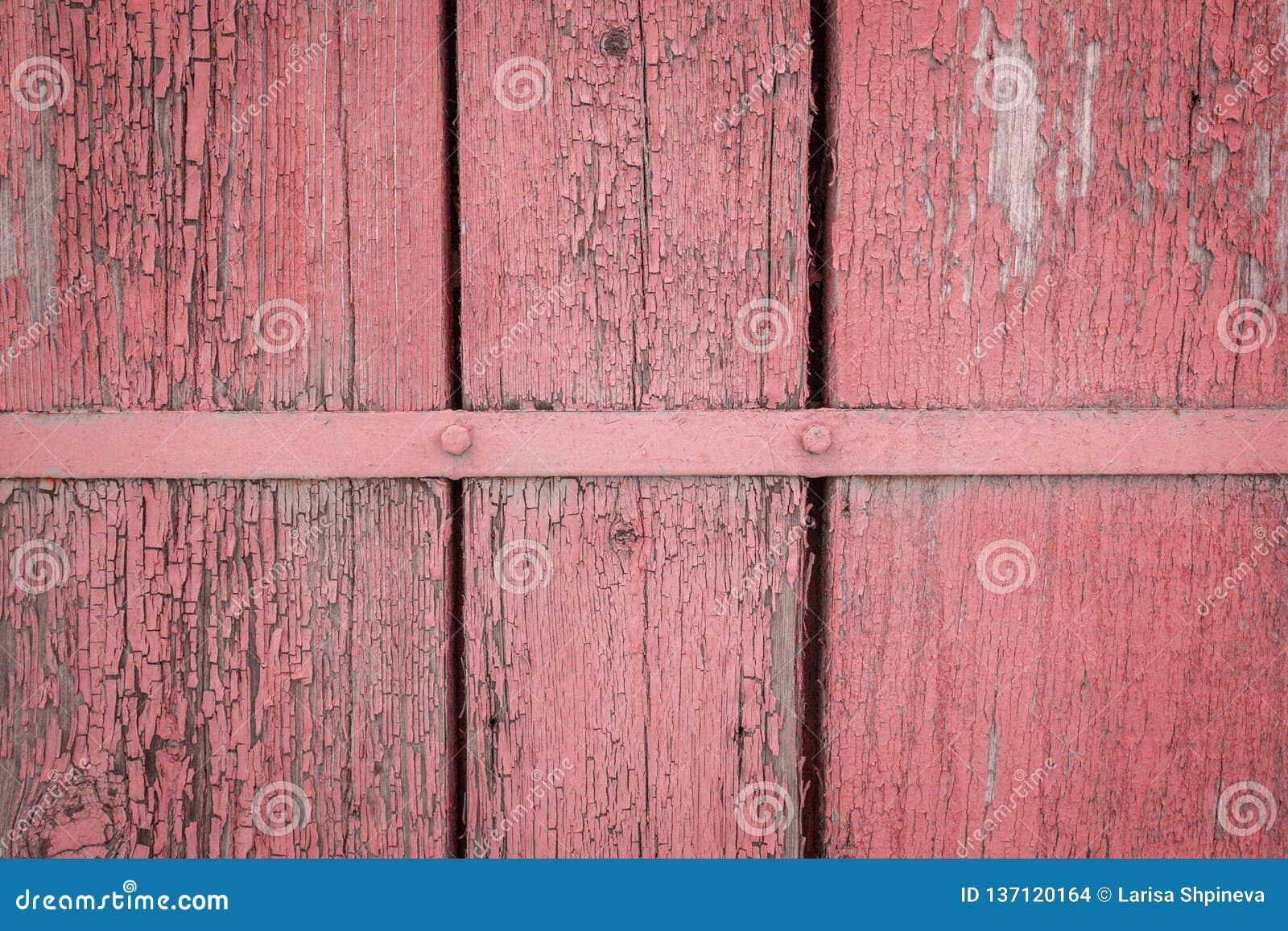 Alte verwitterte hölzerne Planke gemalt in Lebenkoralle, rosa Farbe mit Metallstreifen, hölzerner Beschaffenheitswandhintergrund