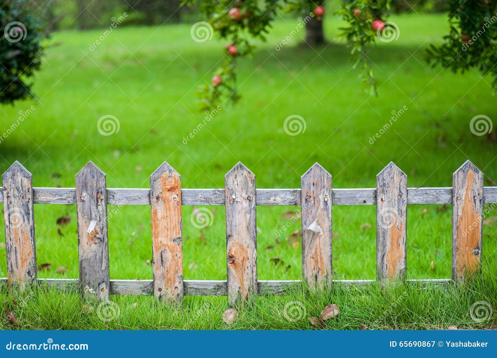 Alter Kleiner Zaun Auf Dem Grunen Rasen Im Garten Stockbild Bild