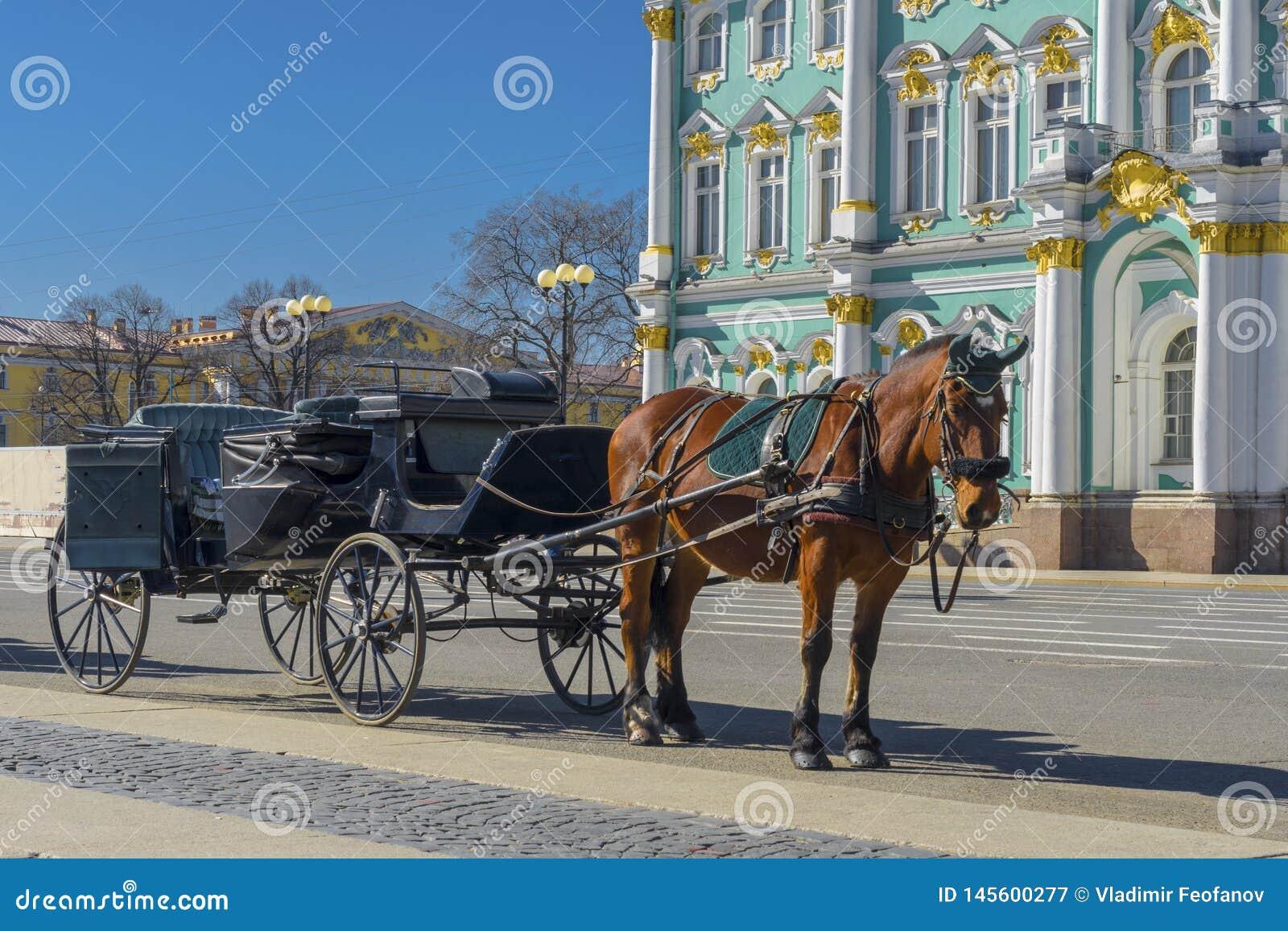 Alter Retro- Wagen vor Winter-Palast-Einsiedlerei-Museum auf Palast-Quadrat in St Petersburg, Russland Historisches altes