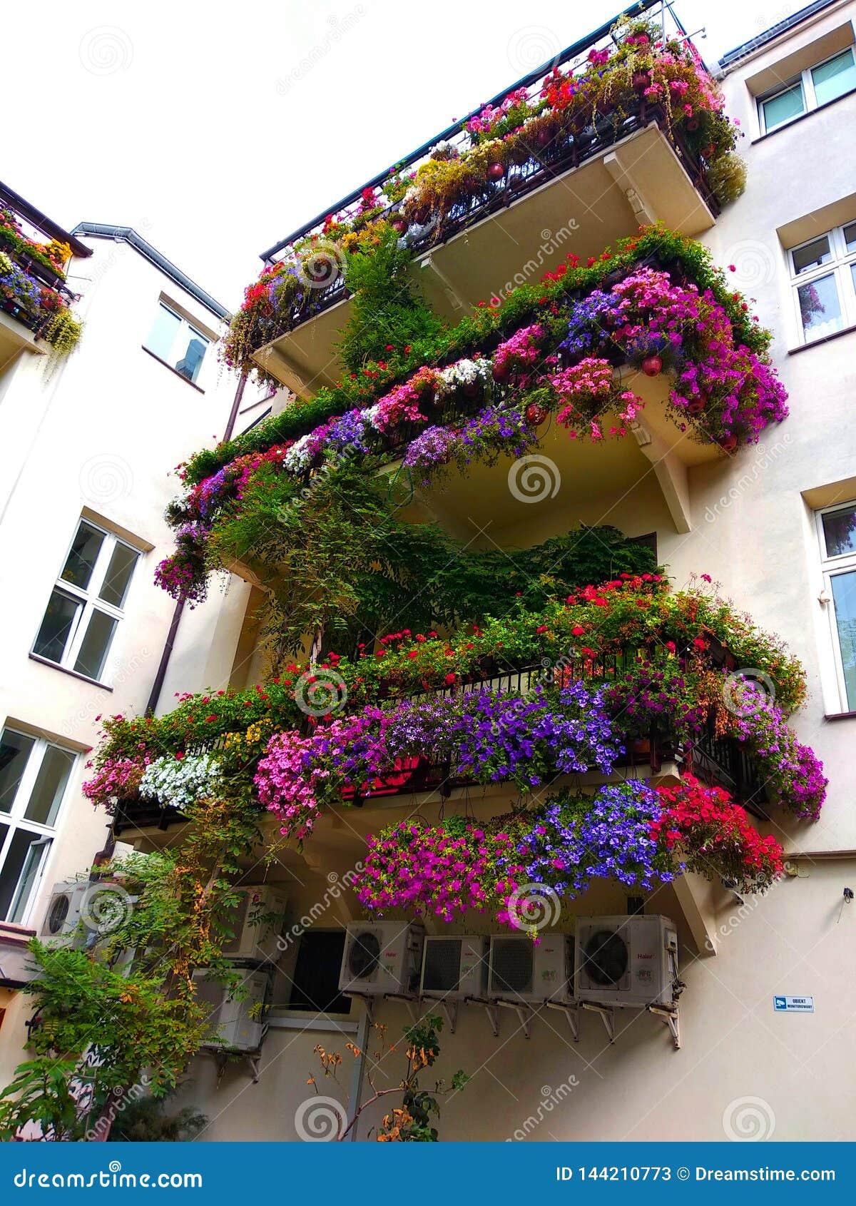 Alter romantischer Balkon mit Blumen in der Mitte von Warschau
