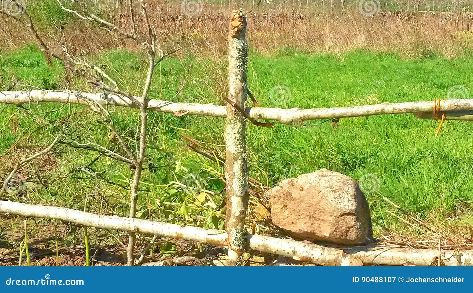 Zaun Aus Stein