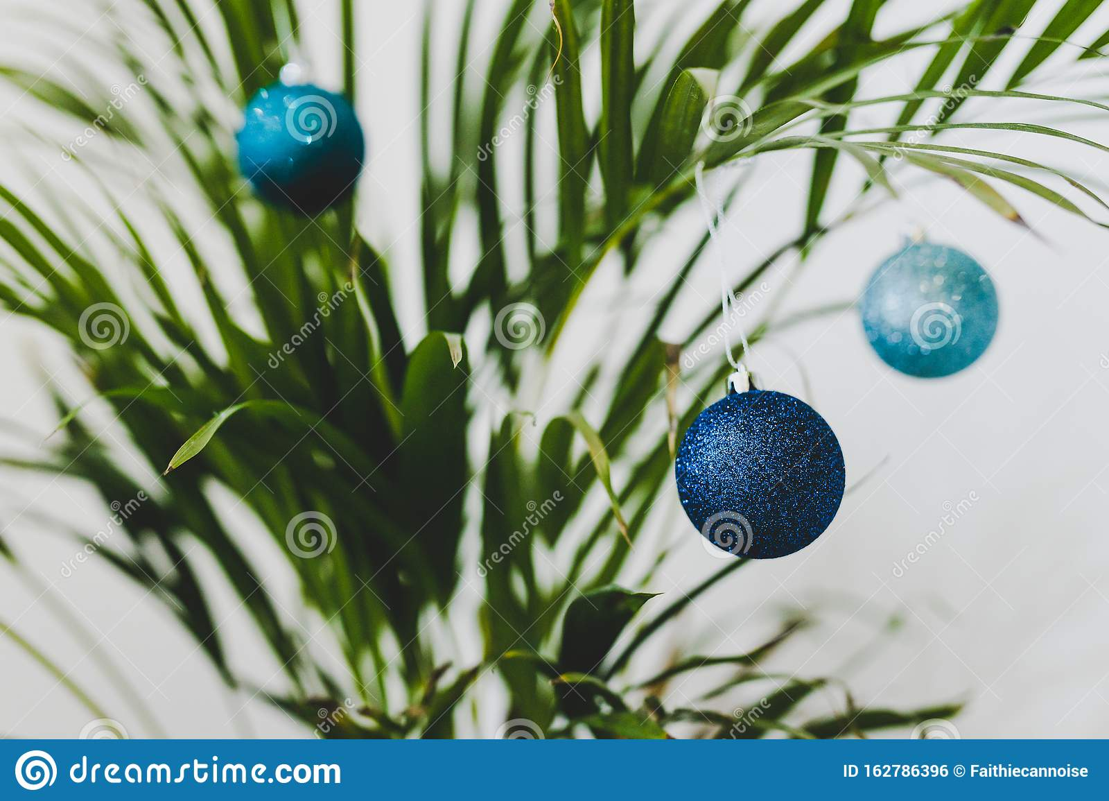 Alternative Christmas Tree Palm Plant With Christmas Baubles For The Festive Season In Summer For The Southern Hemisphere Stock Photo Image Of Religion Hemisphere 162786396