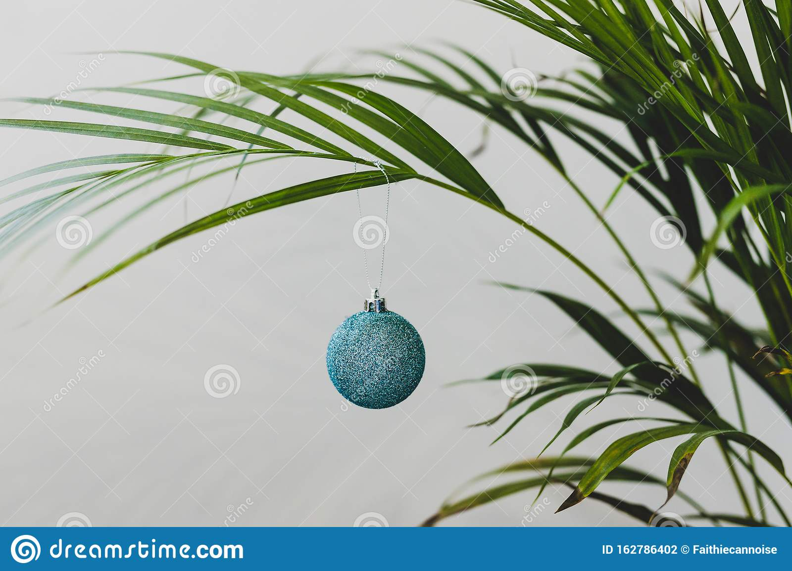 Alternative Christmas Tree Palm Plant With Christmas Baubles For The Festive Season In Summer For The Southern Hemisphere Stock Photo Image Of Chirstmas Giving 162786402