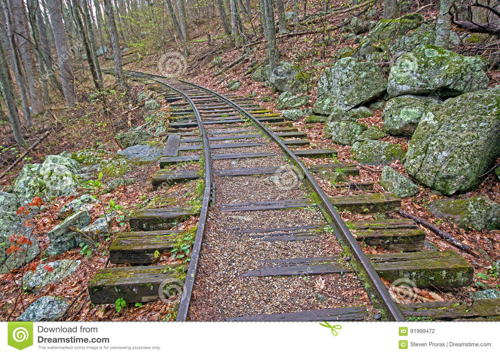 Altes Eisenbahn Bett Im Wald Stockfoto Bild Von Kante Verfallen