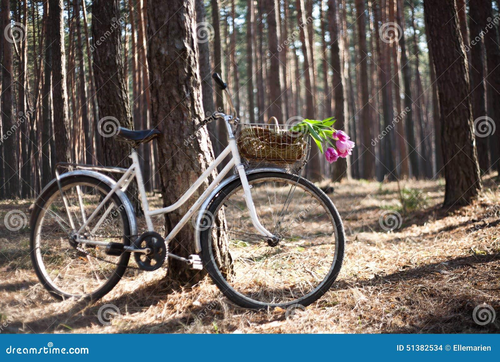 altes fahrrad mit blumen im korb das holz stockfoto. Black Bedroom Furniture Sets. Home Design Ideas
