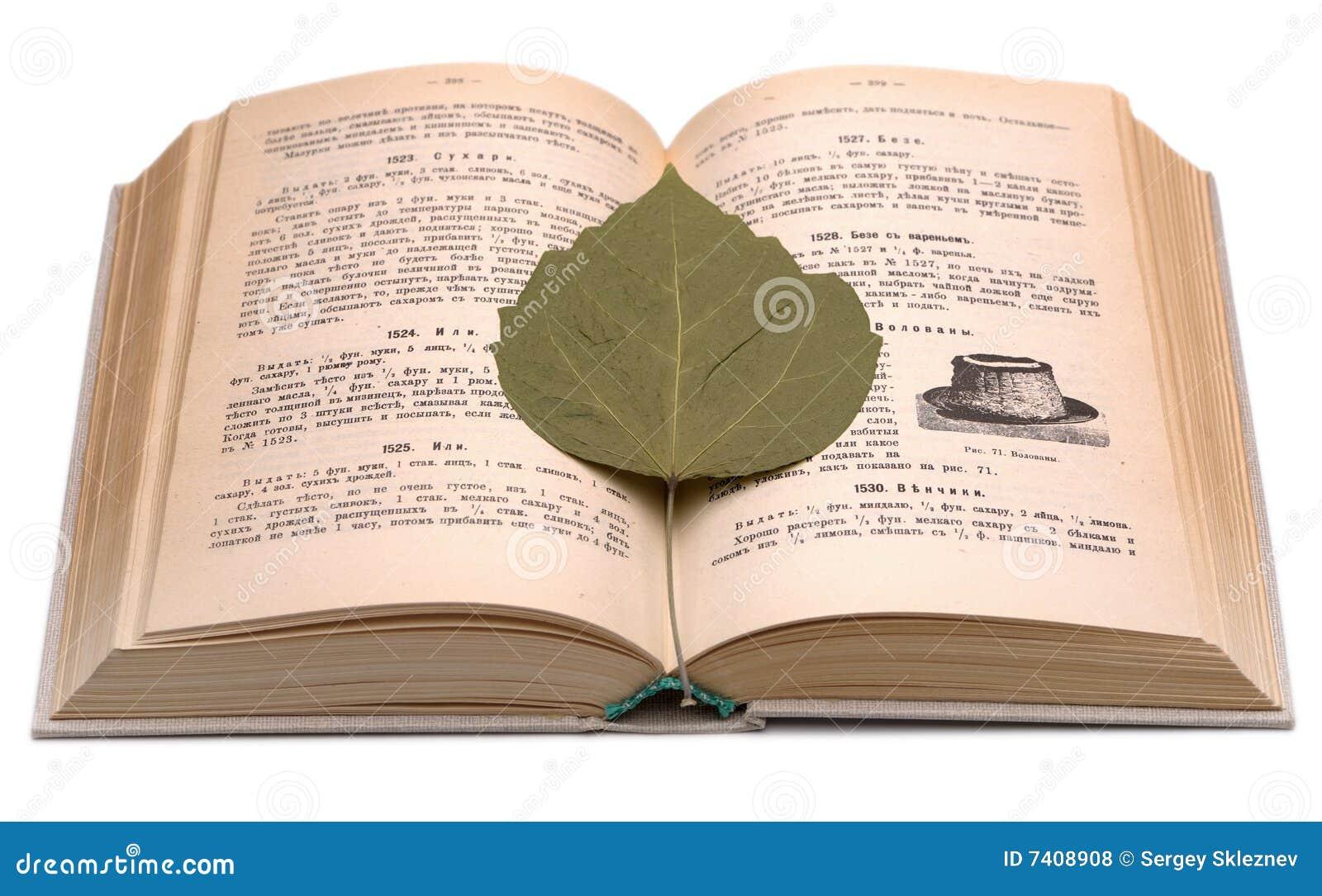altes kochbuch und trockenes blatt stockfoto bild von teiler bookmark 7408908. Black Bedroom Furniture Sets. Home Design Ideas