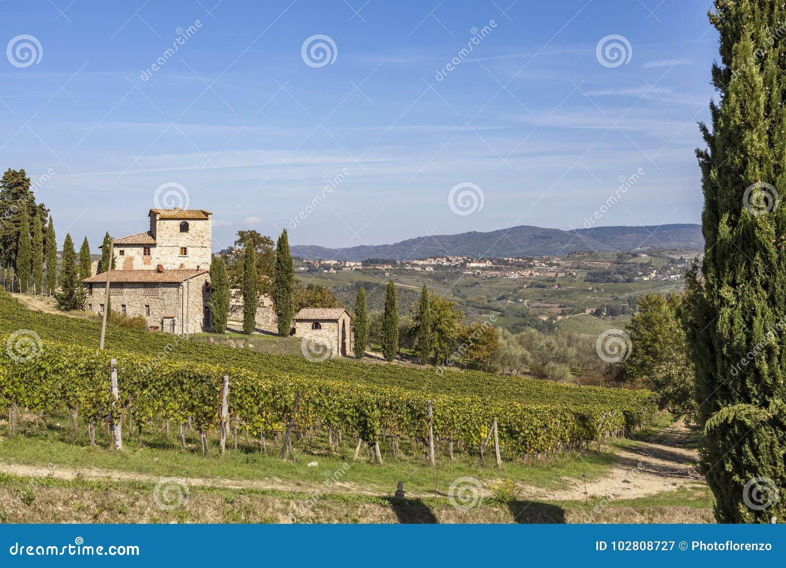 Altes Steinhaus auf einem Hügel mit Weinbergen im Chianti in Toskana I