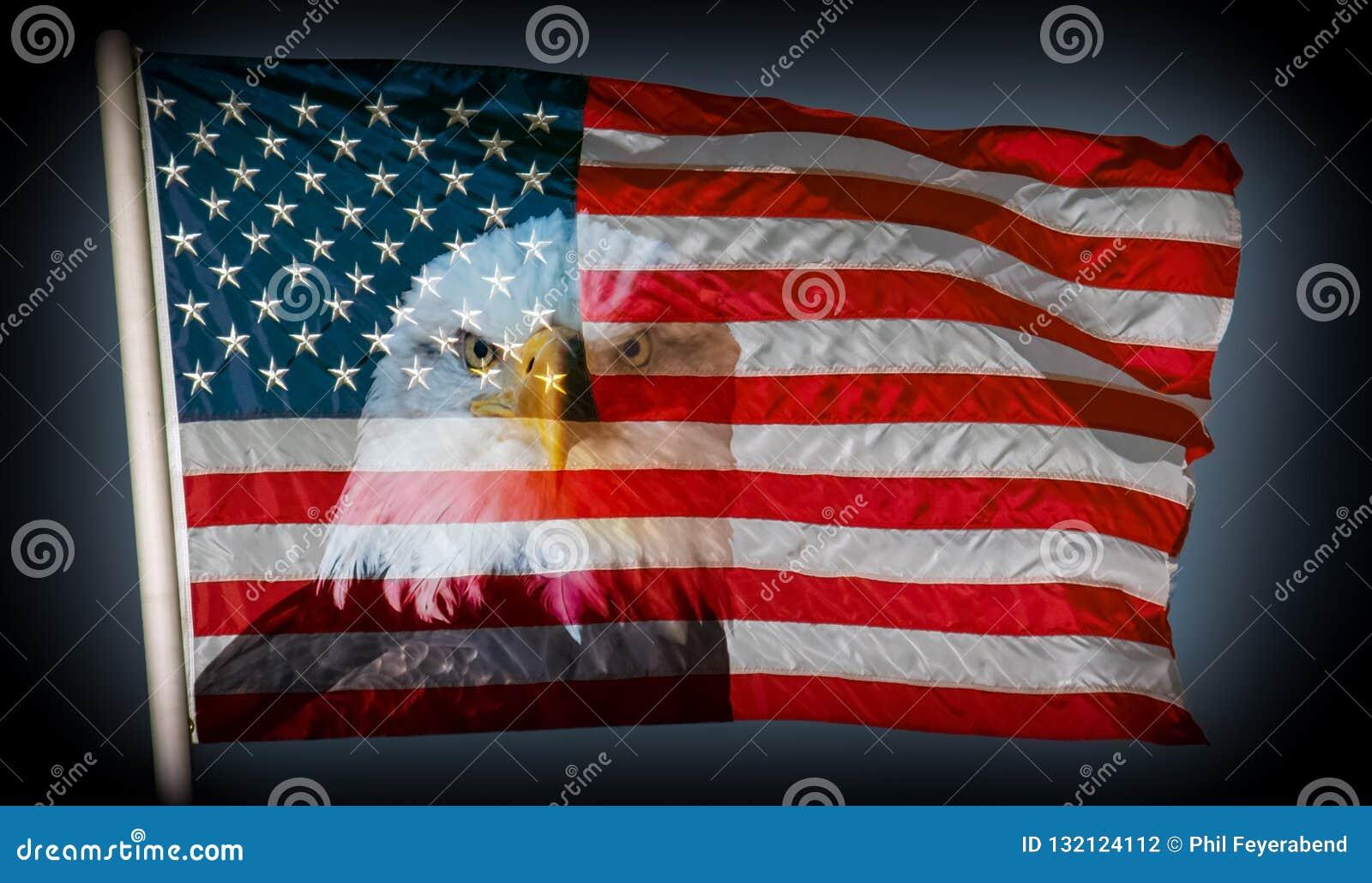 Altijd waakzame Amerikaanse vlag en kale adelaars donkere achtergrond