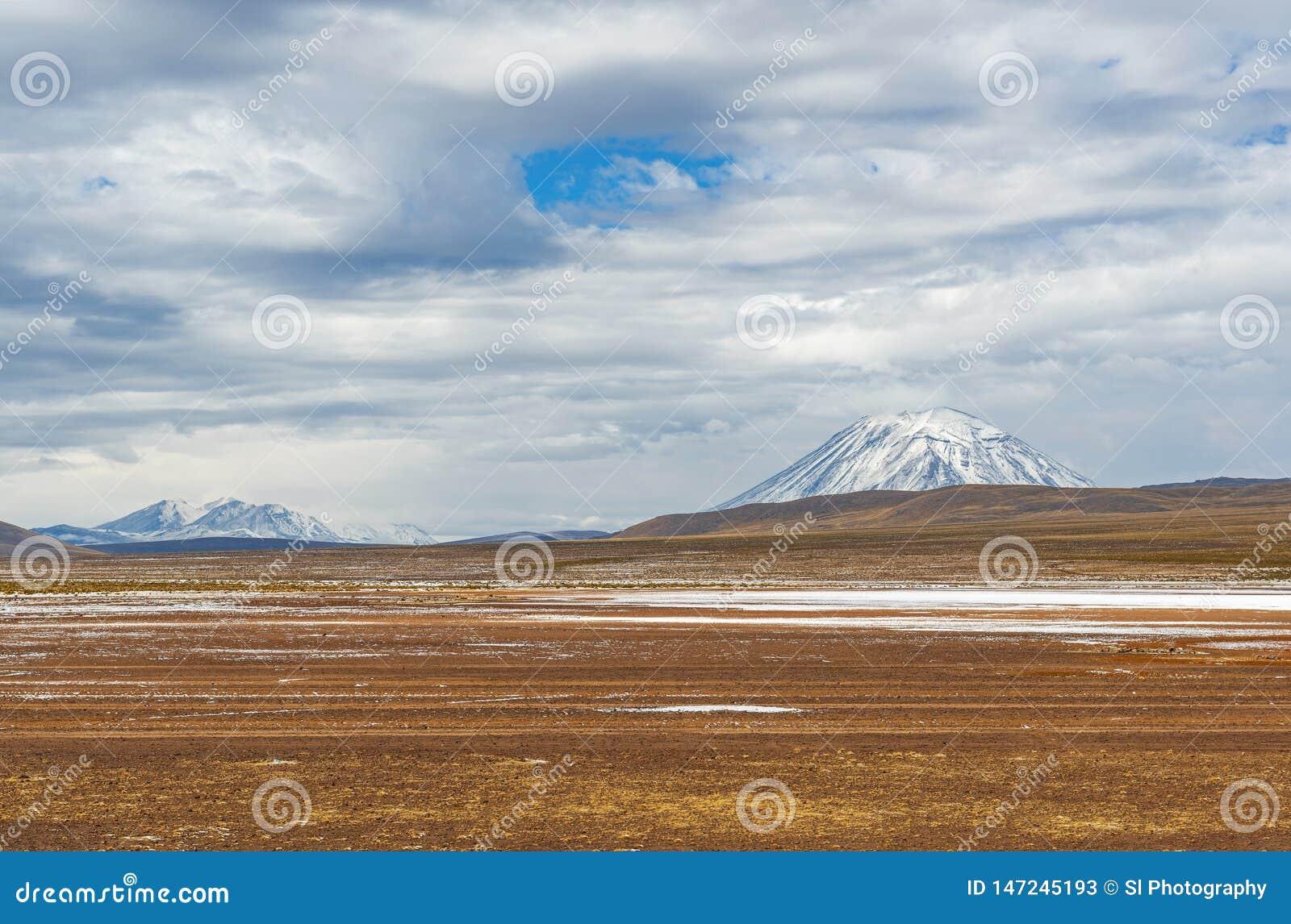 Altiplano krajobraz i Misti wulkan, Peru