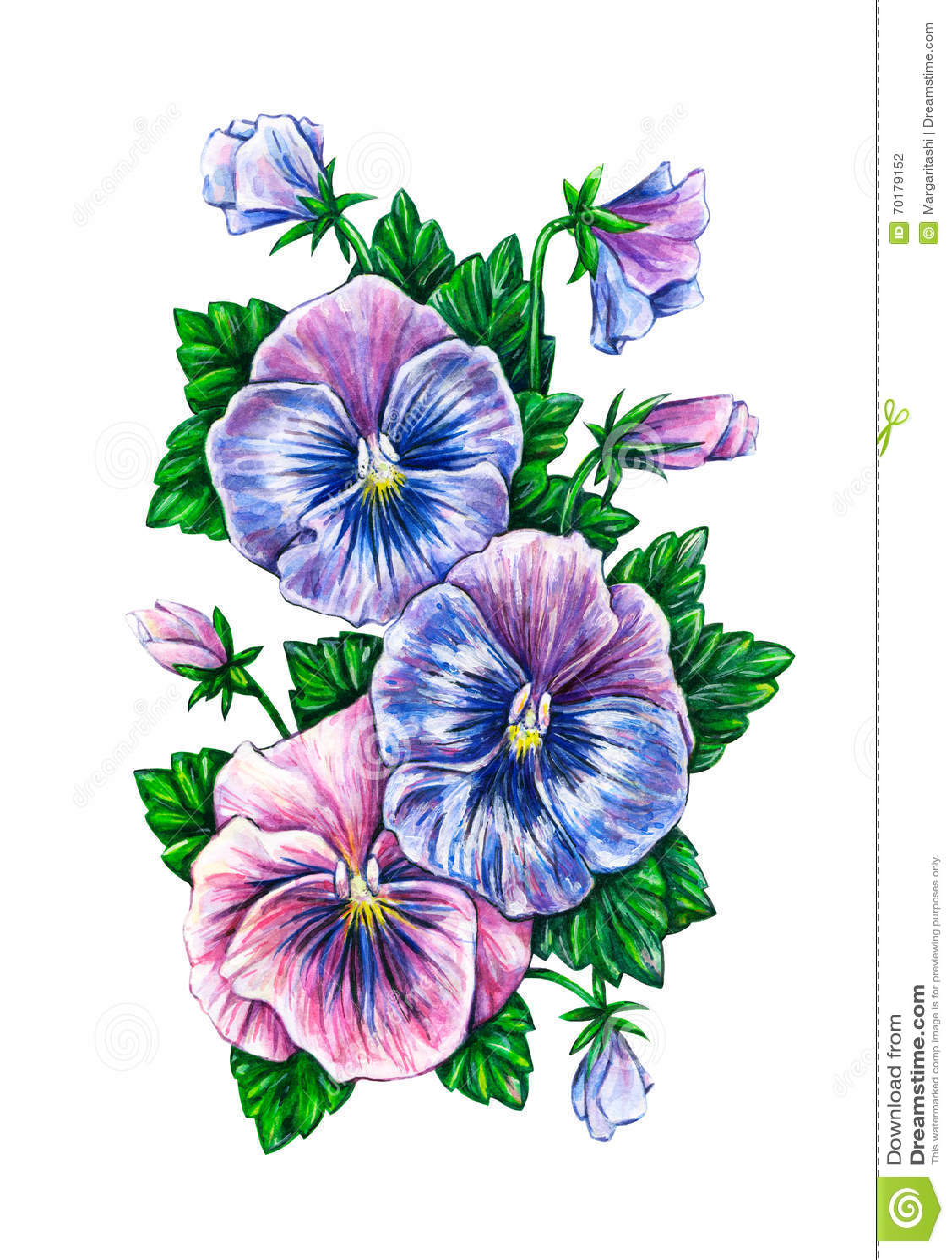 Alto tricolore dessin color de fleurs de pens es d - Dessin colore ...