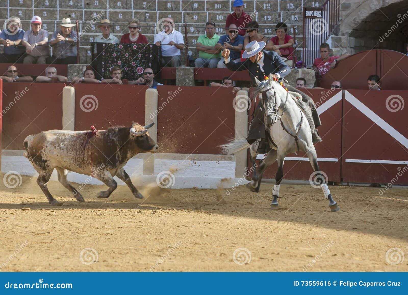 Alvaro Montes, bullfighter on horseback spanish, Ubeda, Jaen, Spain