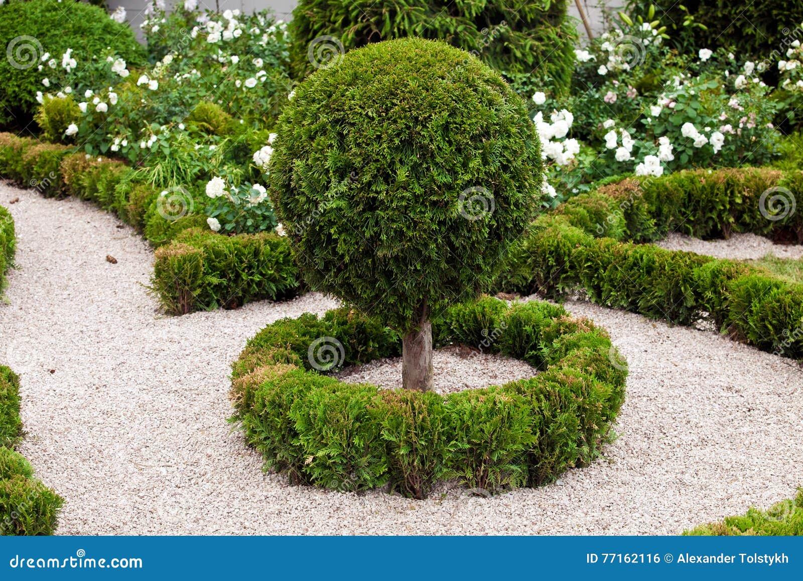 Aménagement de conception de jardin