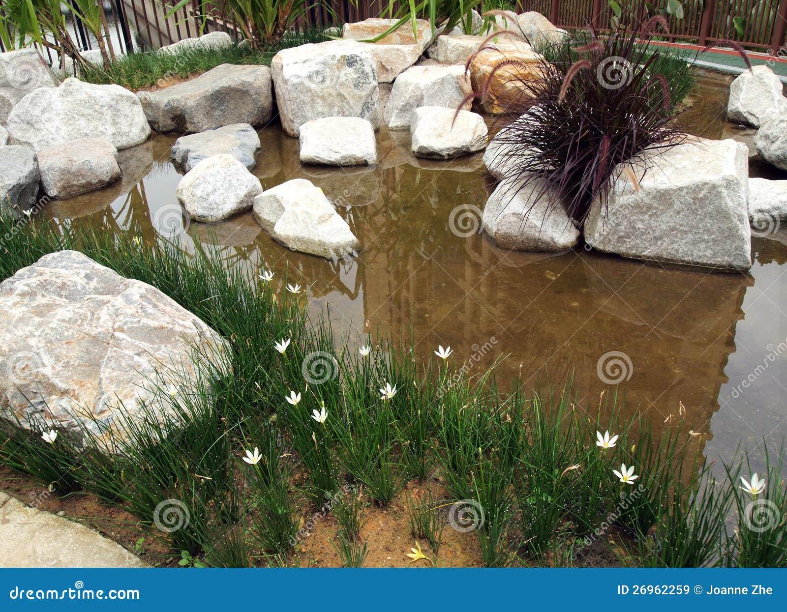 am nagement neuf plant de jardin de rocaille de l 39 eau. Black Bedroom Furniture Sets. Home Design Ideas