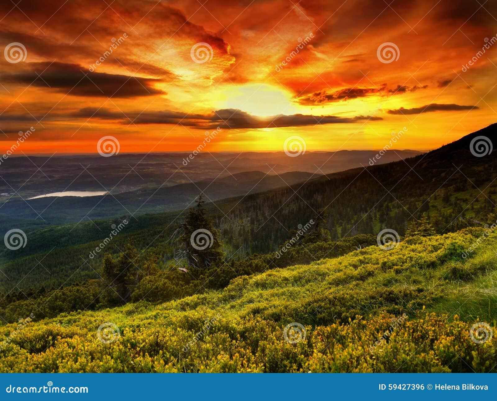 Aménagez en parc, des couleurs magiques, lever de soleil, pré de montagne