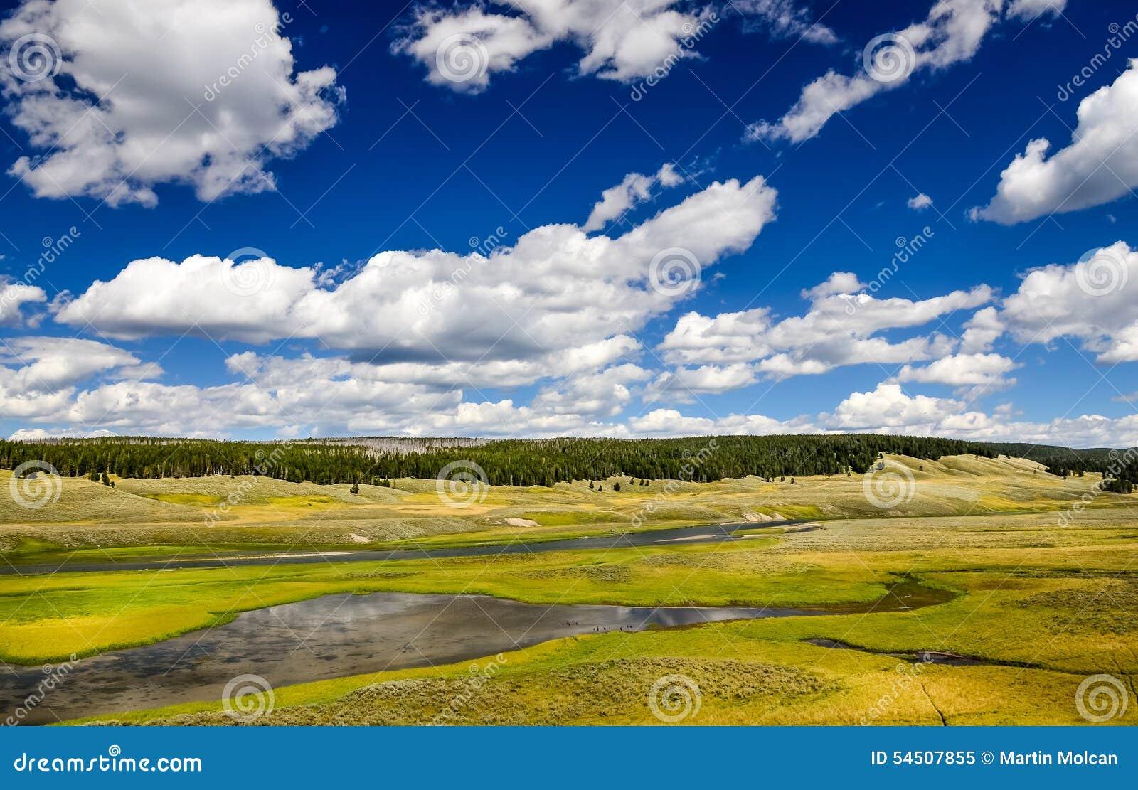 Aménagez la vue en parc des prés et de la rivière dans Yellowstone, Etats-Unis