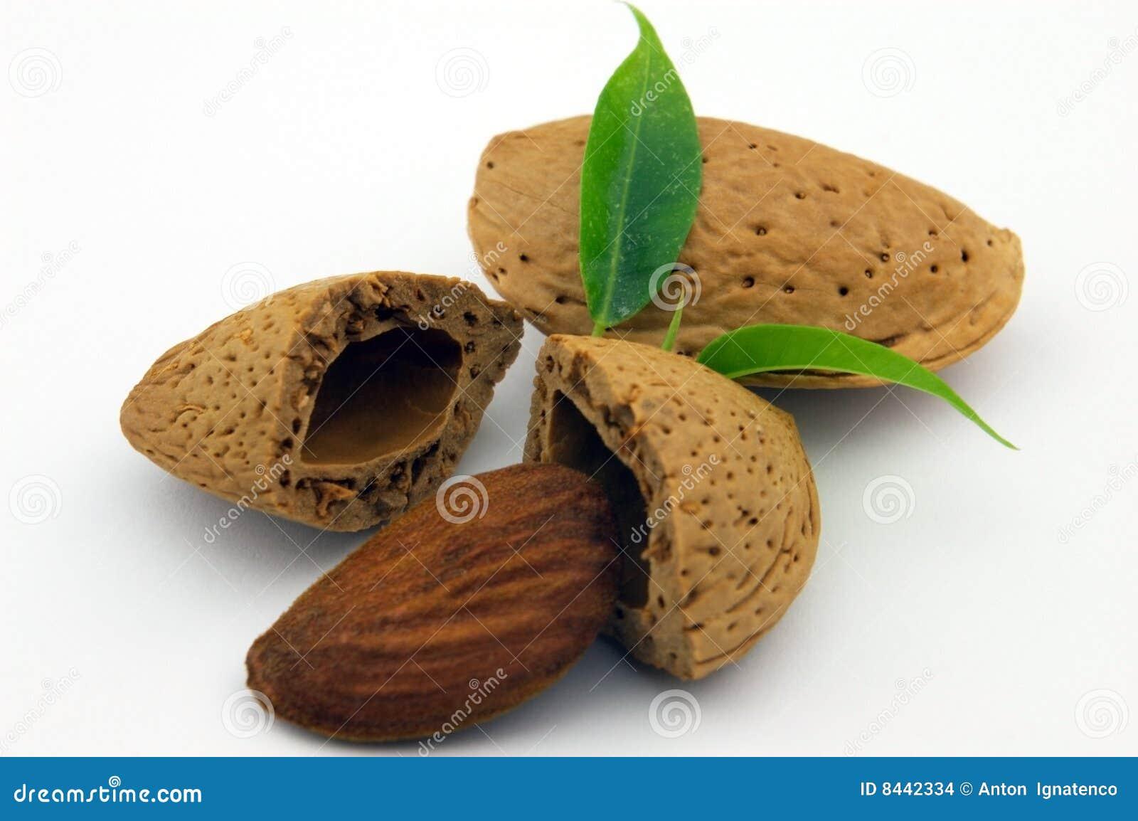 Amande with leaf