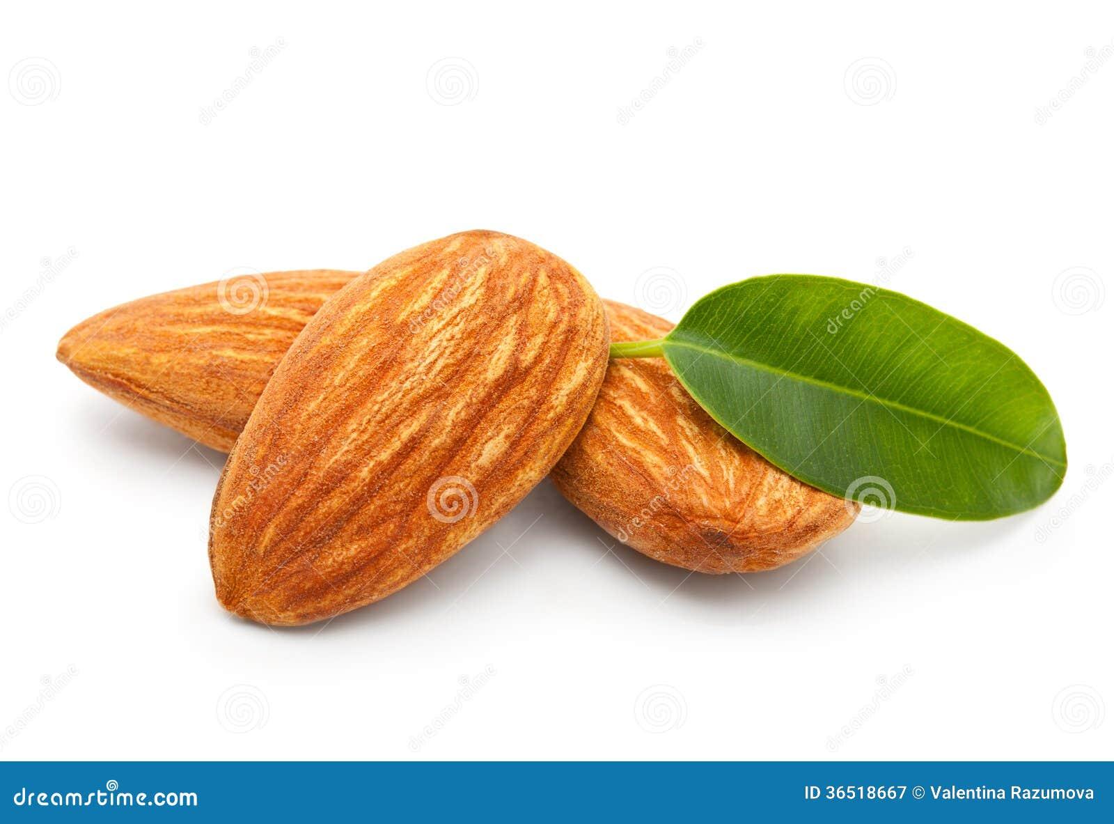Amandes nuts avec des feuilles