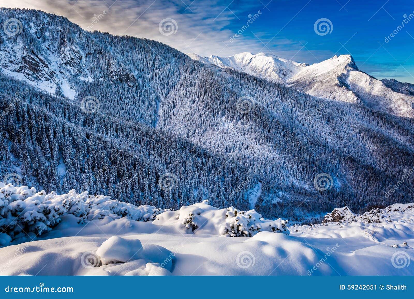Amanecer frío en las montañas de Tatra
