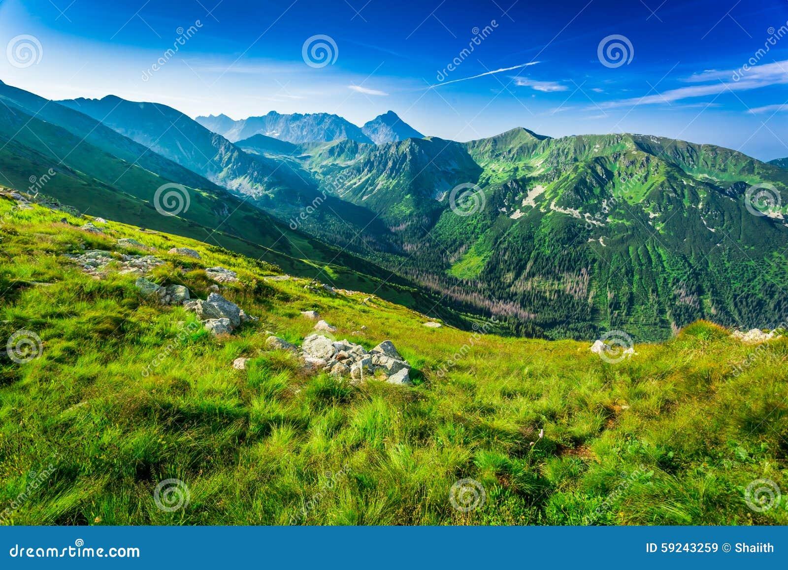 Download Amanecer Hermoso En Las Montañas Imagen de archivo - Imagen de alto, montaña: 59243259
