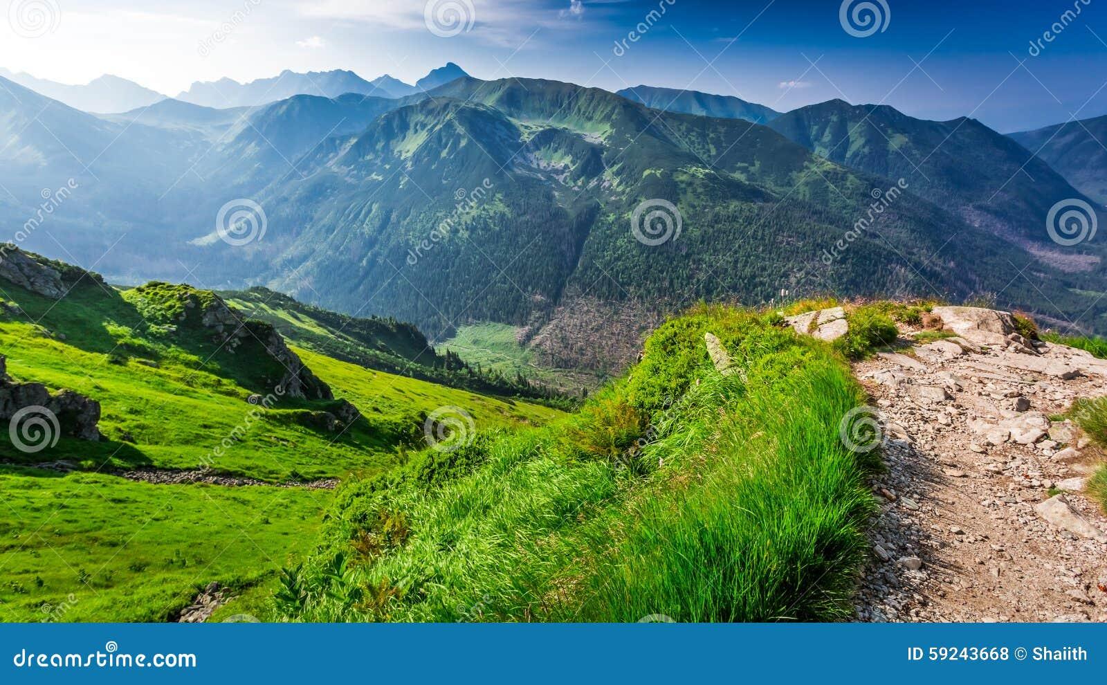 Amanecer hermoso en las montañas de Tatra en verano