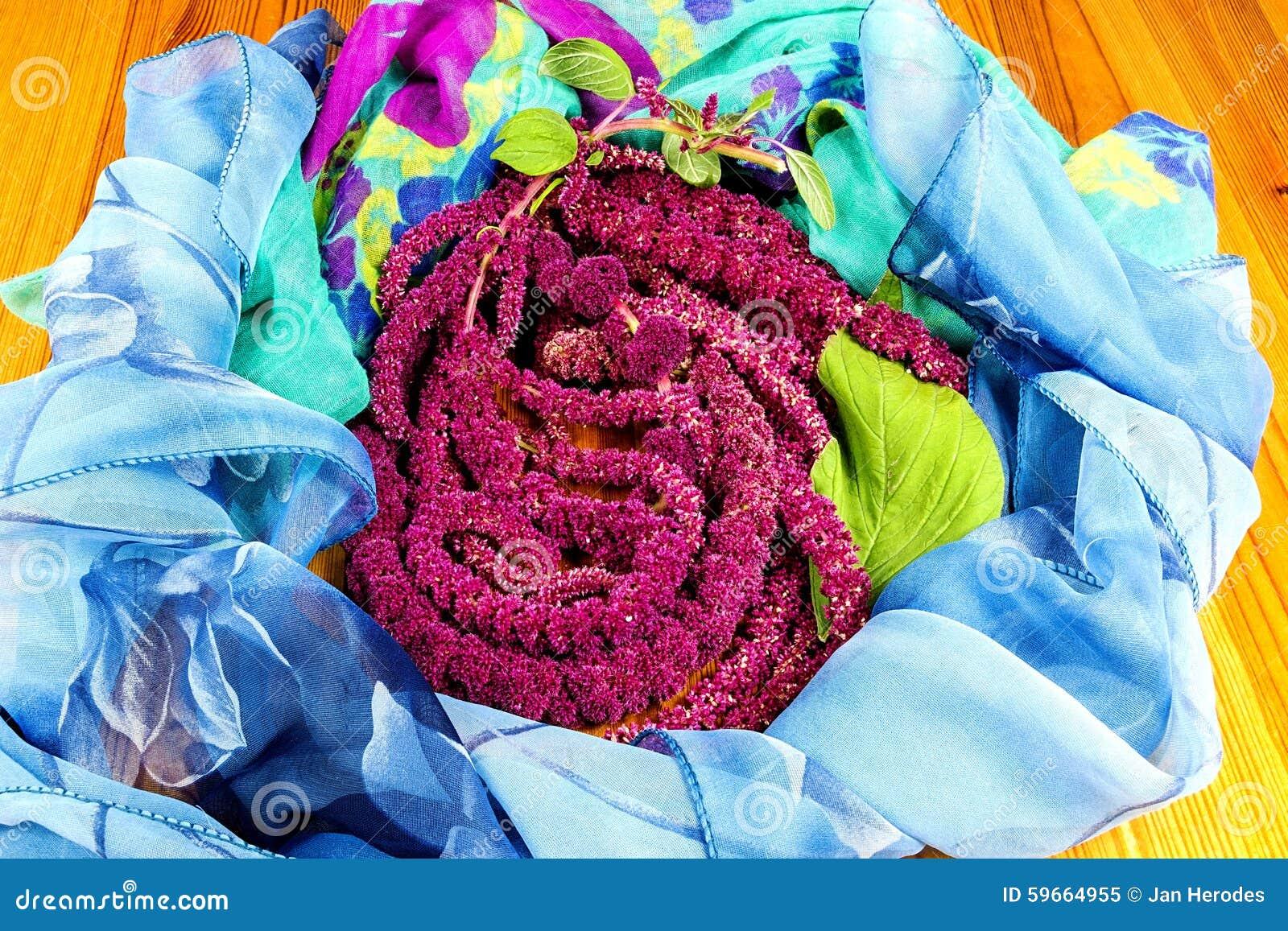 Amaranthus de bloemen van Caudatus, als Liefde worden bekend die ligt Aftappend