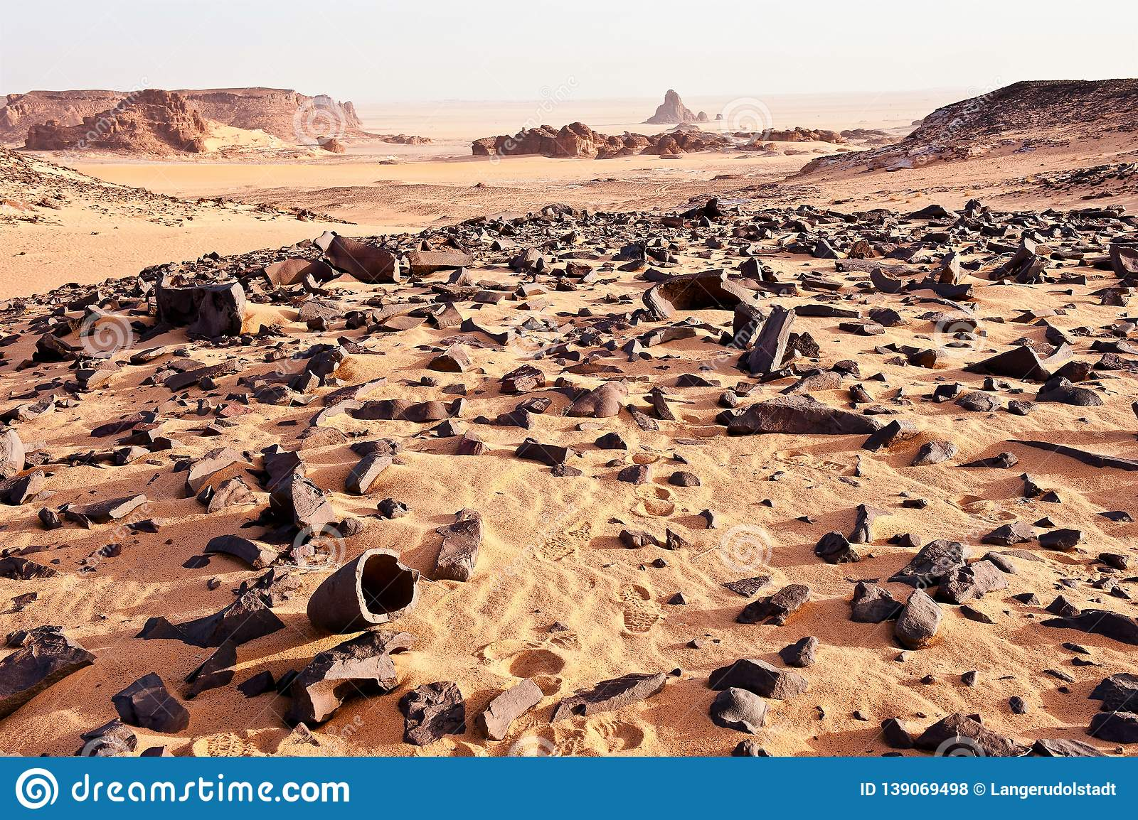 Amasing and great landscape. Remains of a petrfied wood. Sahara