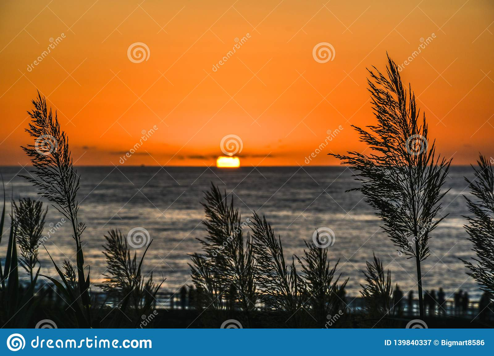 Scenic Sunset With Beautiful Tall Grass In Front And People In Pier Stock Image Image Of California Scenic 139840337