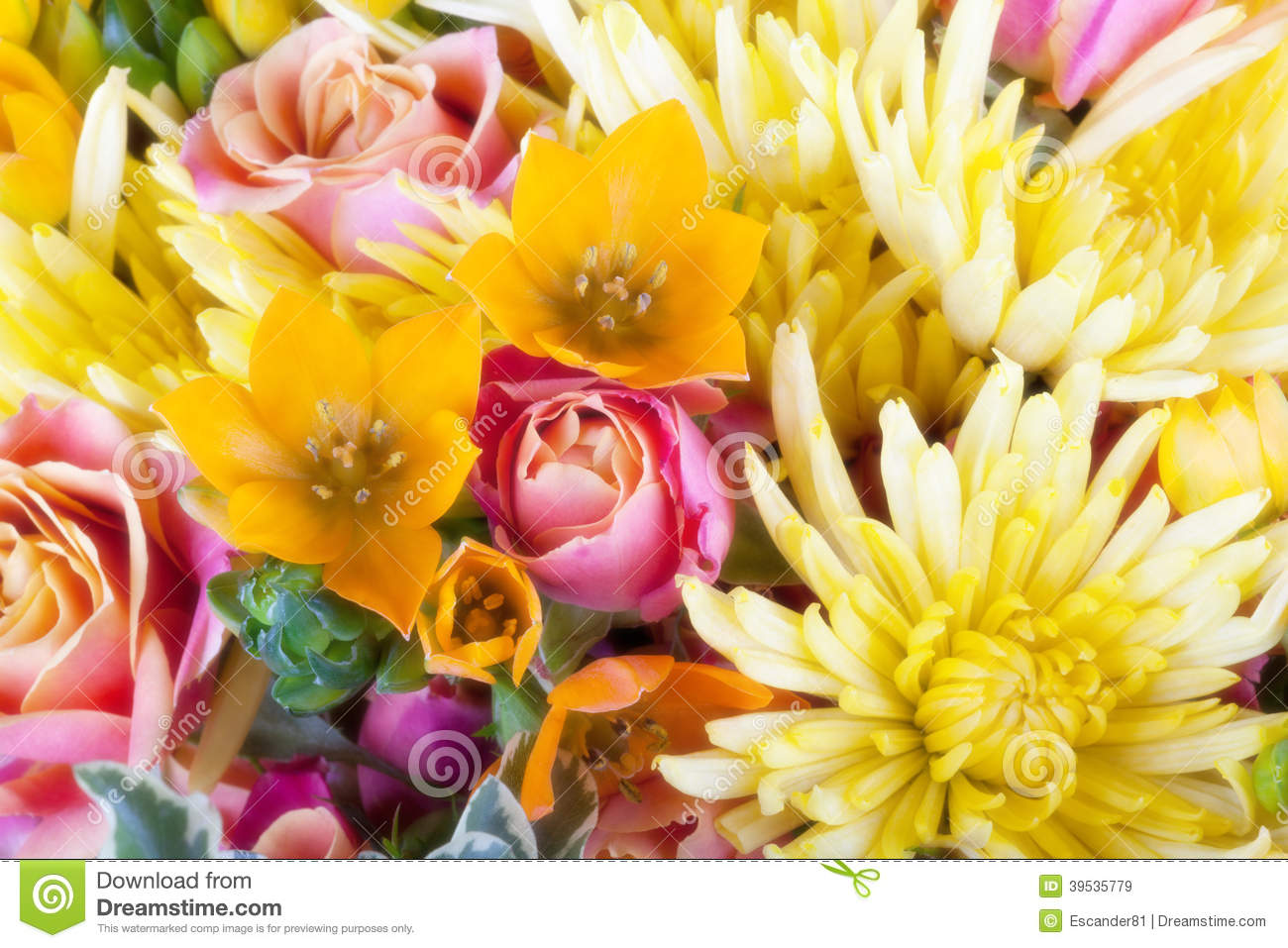 Amazing close up of a flower bouquet stock image image of above amazing close up of a flower bouquet above flowers izmirmasajfo