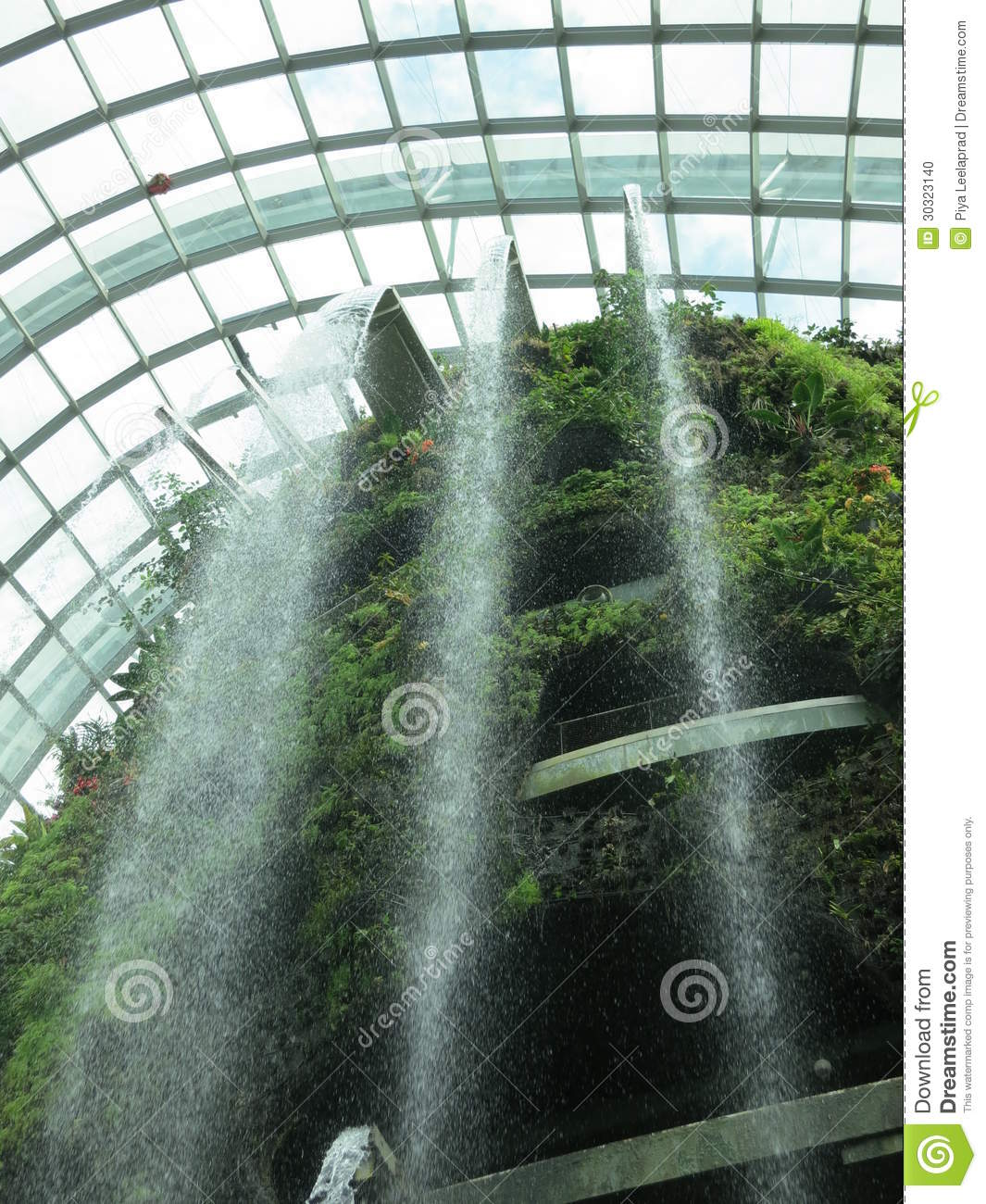 Amazing Cloud Photography: Amazing Cloud Forest Stock Photo