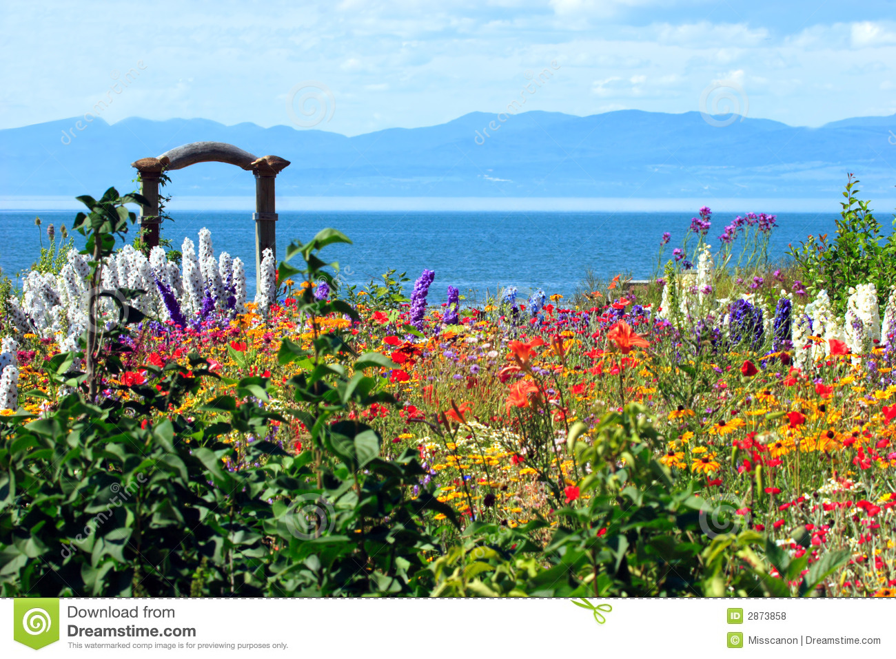 Amazing flower garden stock photo image of estuary for Flowers landscape gardening