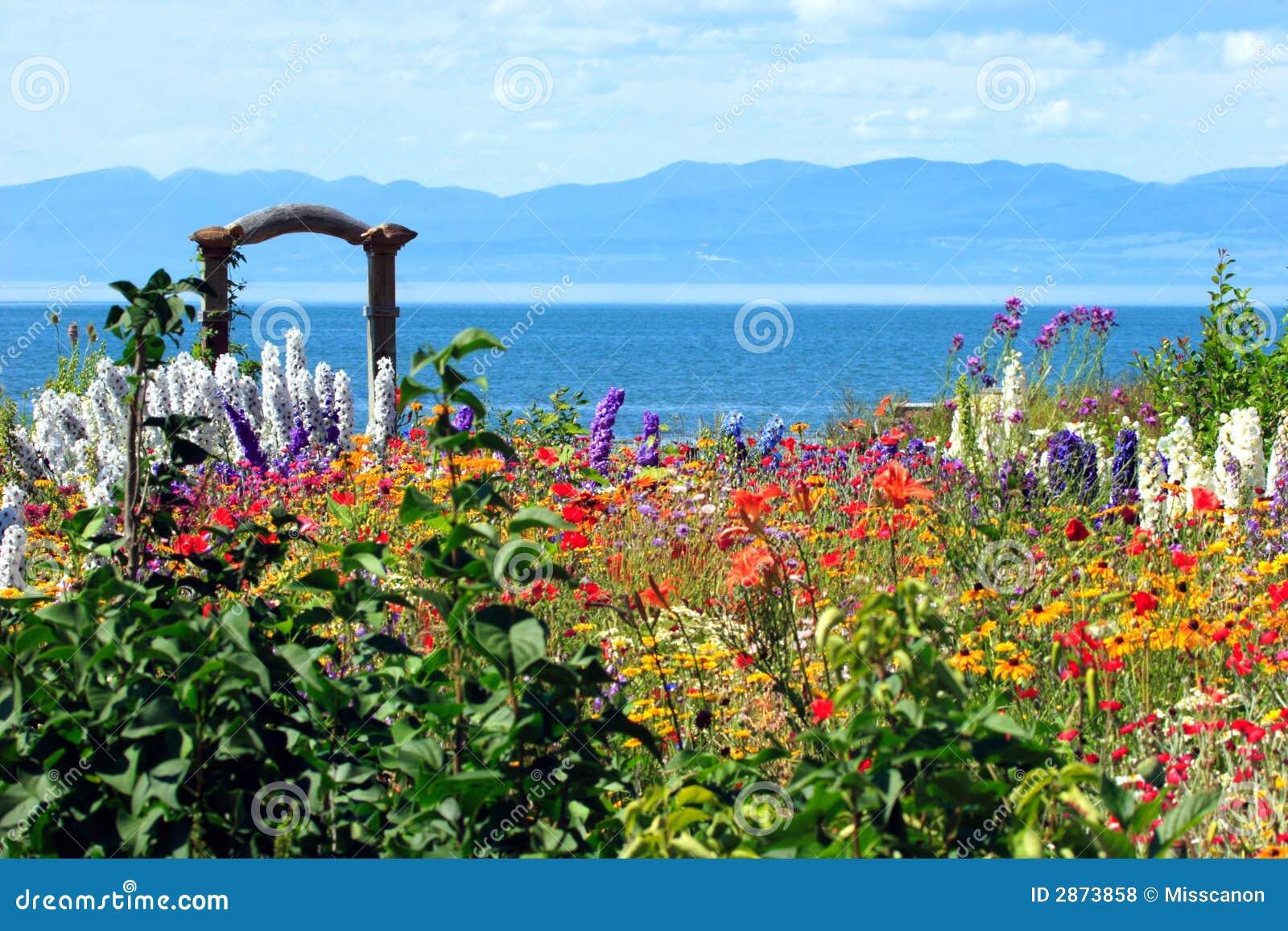 Amazing Flower Garden Royalty Free Stock Photos